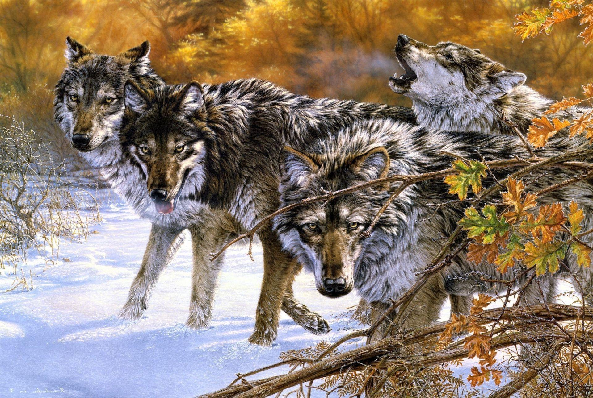 Обои на телефон дикие животные волки