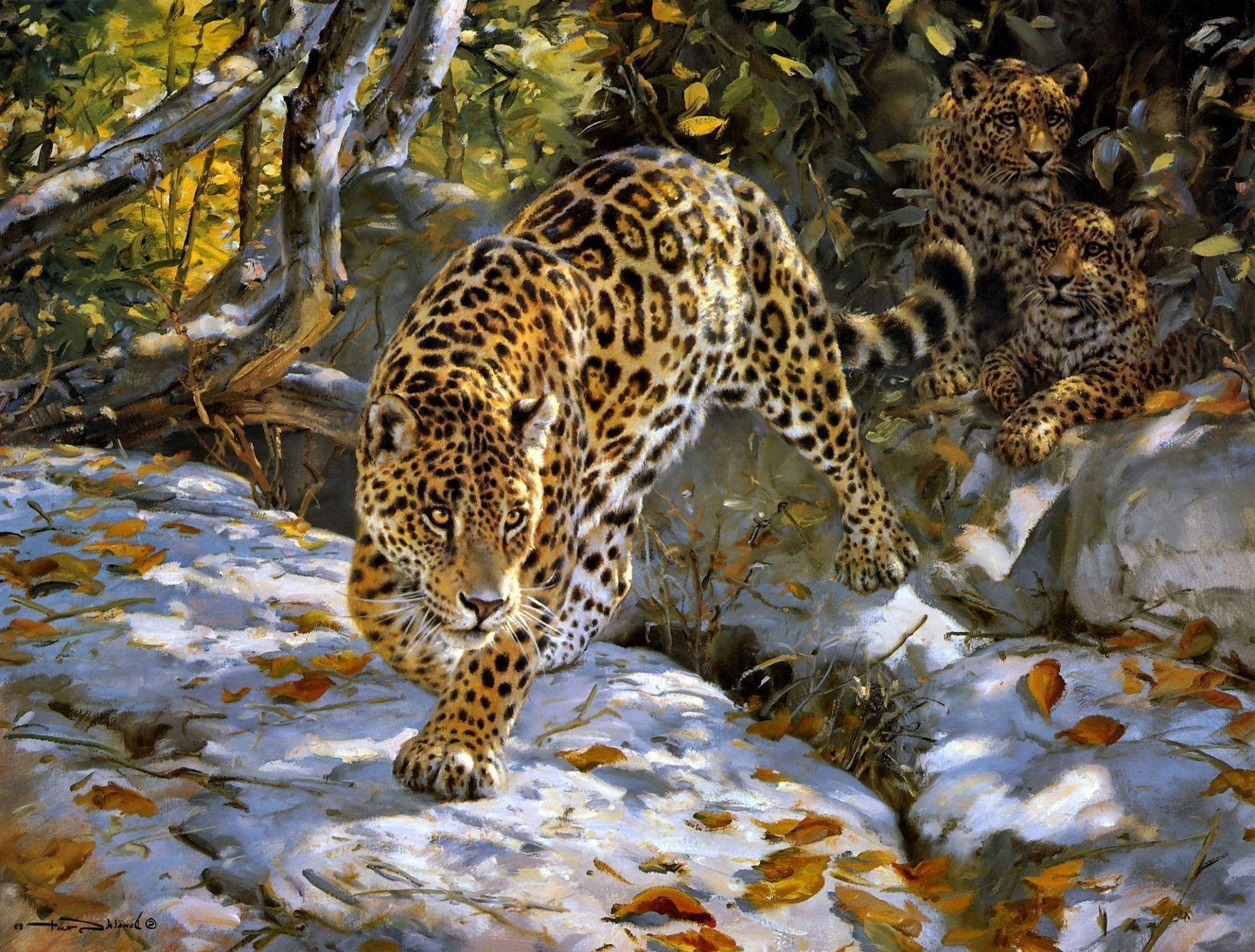 Рисунки с животными красивые