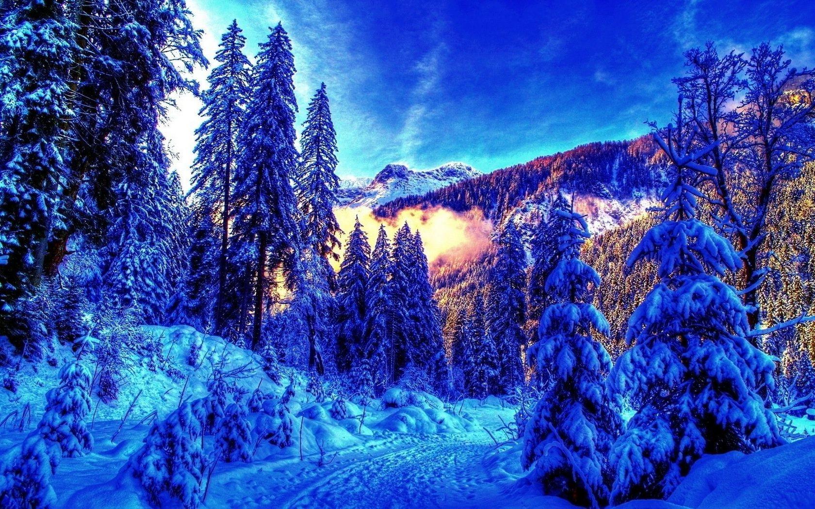 зима картинки на рабочий стол для телефона