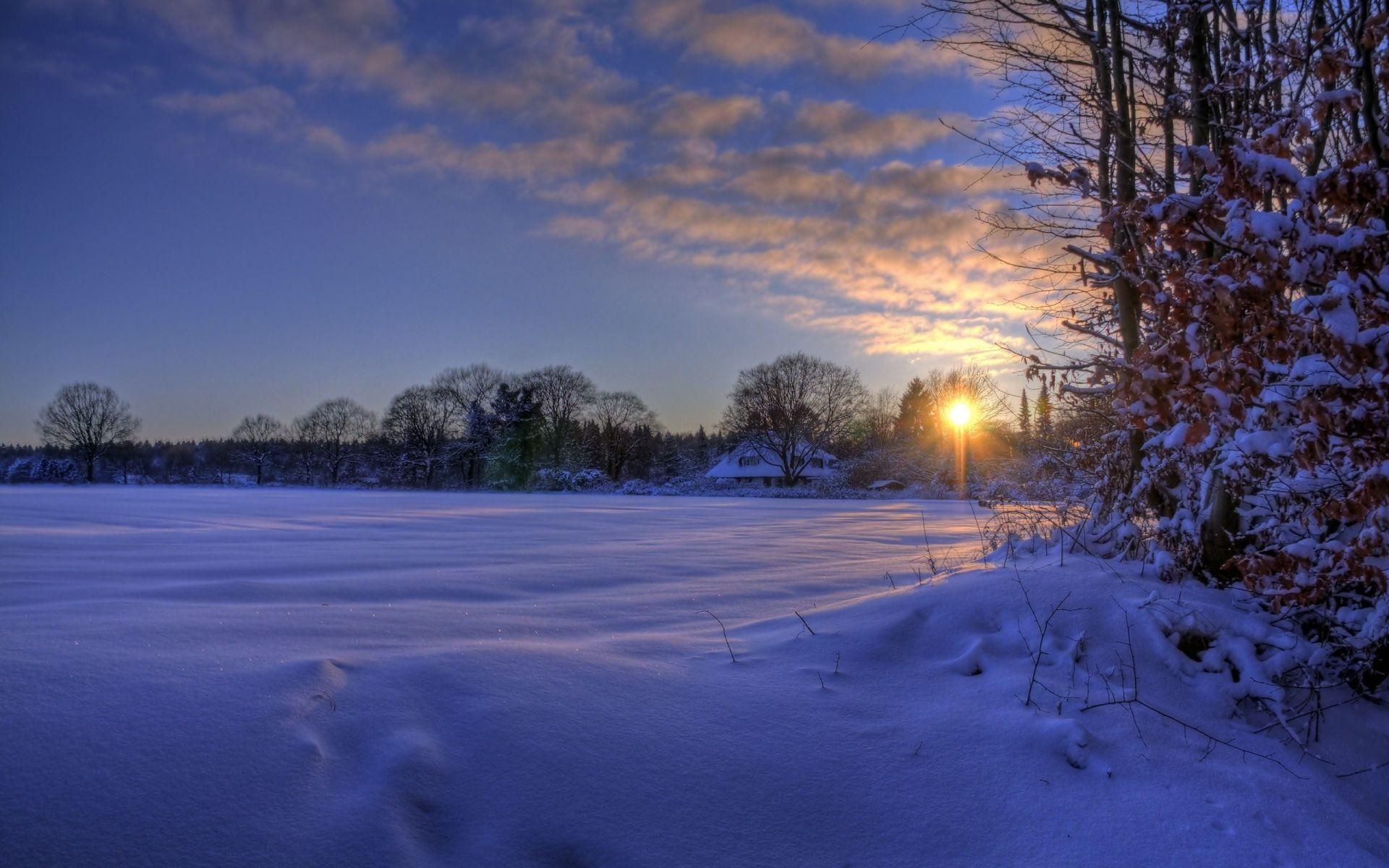 Картинки раннего утра зимой