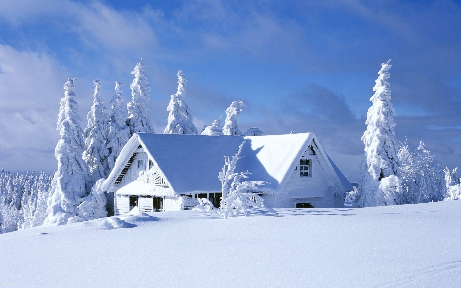 фотографии картинки зима снег на рабочий стол посмеялись, над
