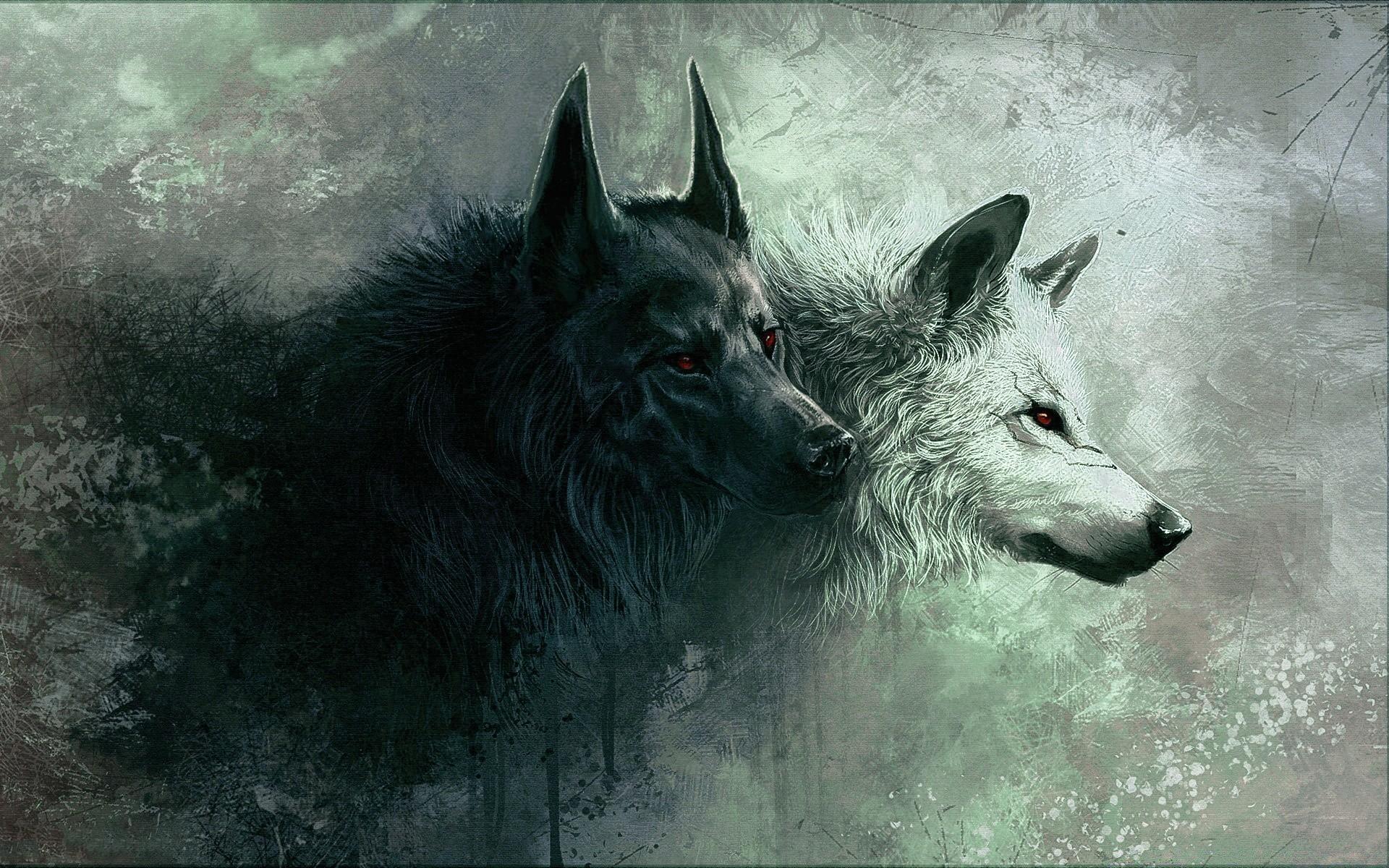 Картинки на рабочий стол белая волчица