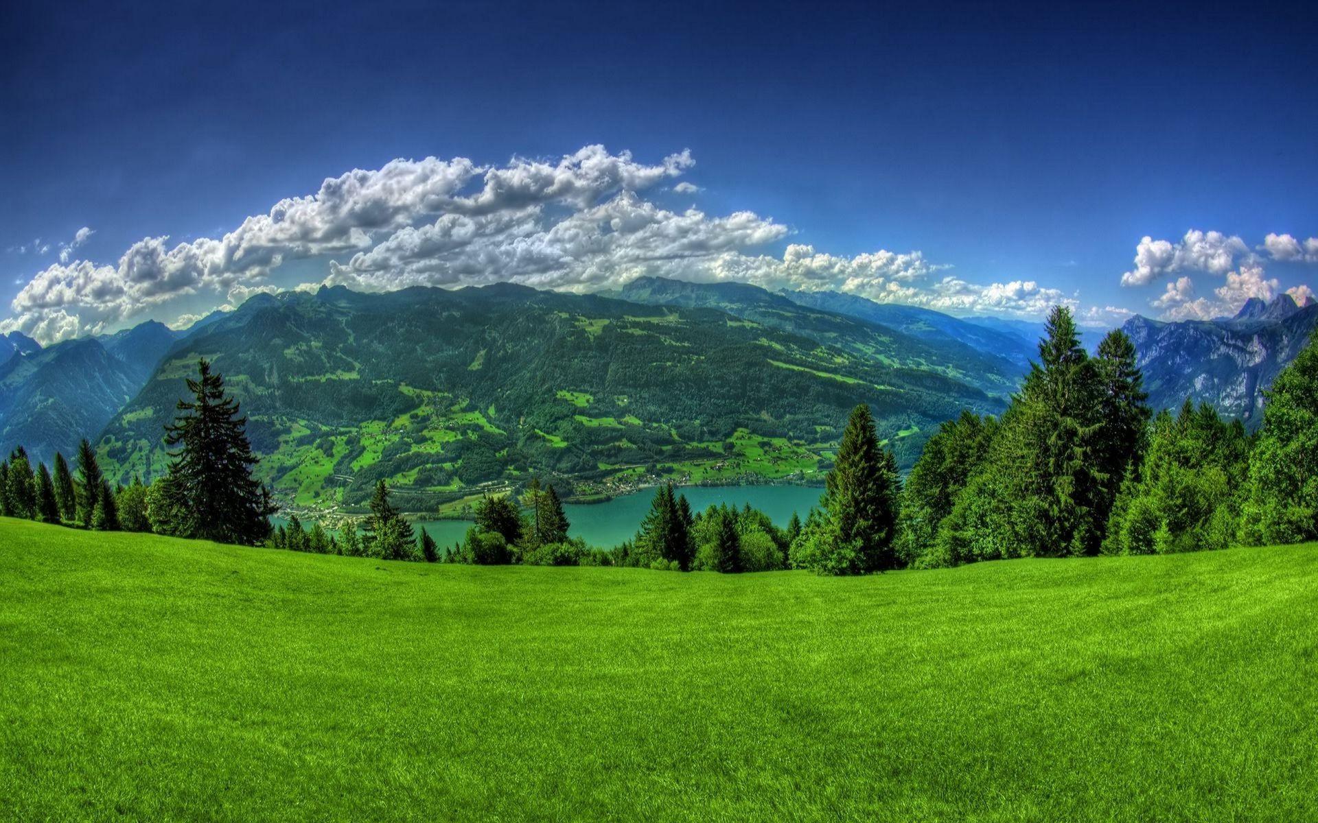 горы растительность лучи солнца без смс