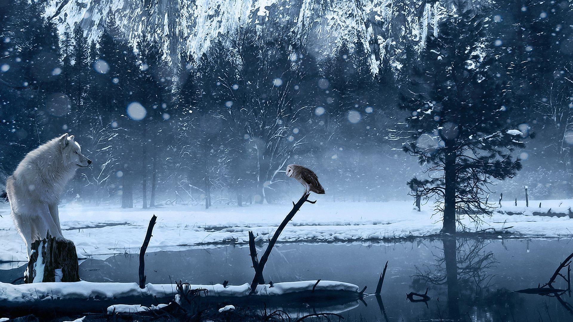 Красивые картинки фото красивые