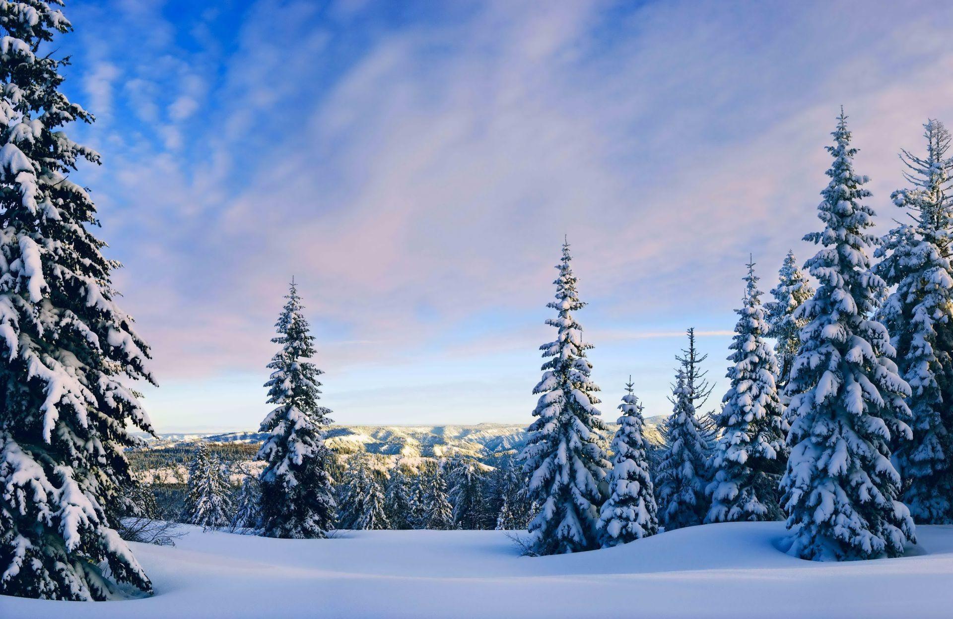 Мужчина картинки, красивый зимний пейзаж картинки в лесу