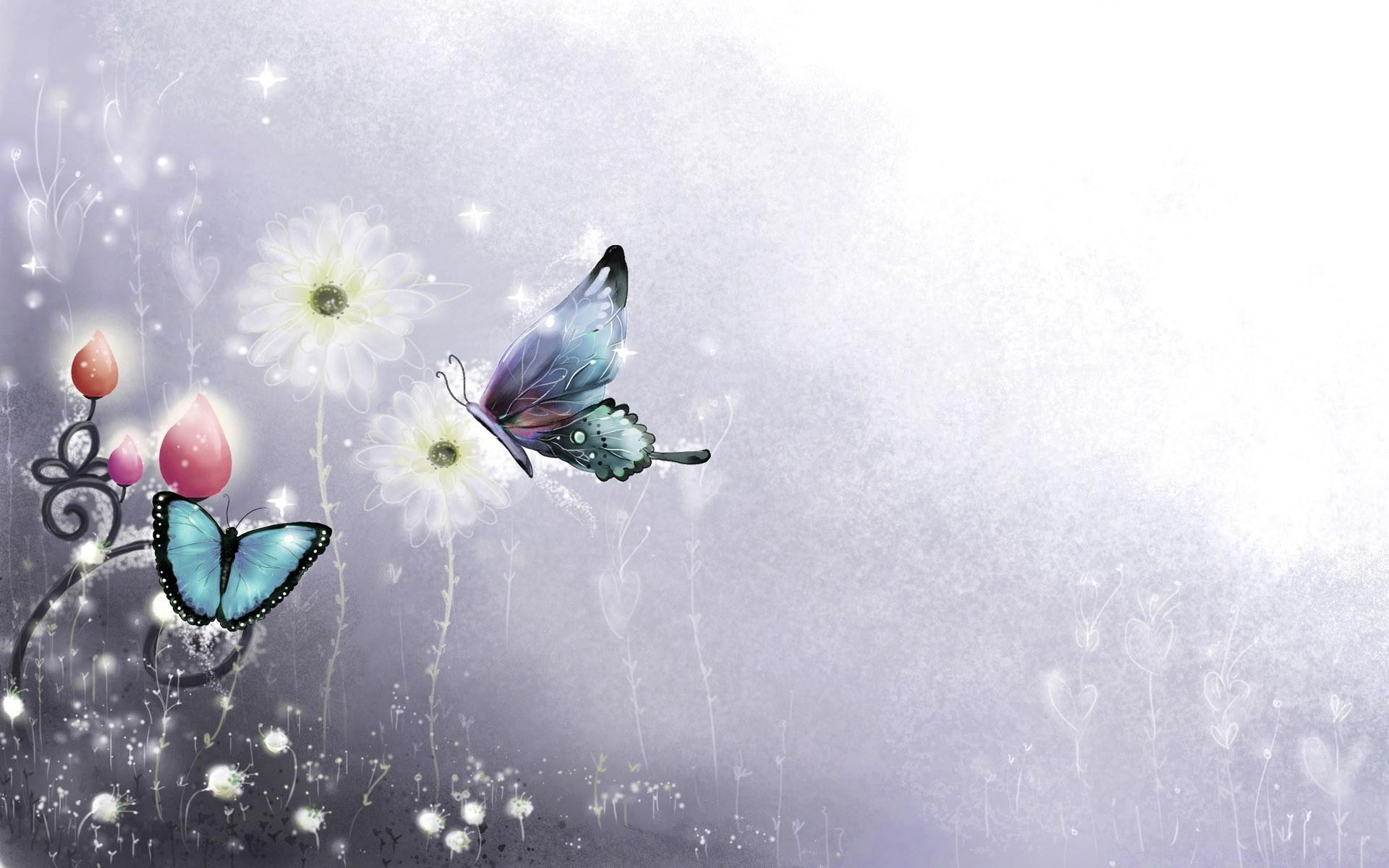 Серия, красивые бабочки открытки