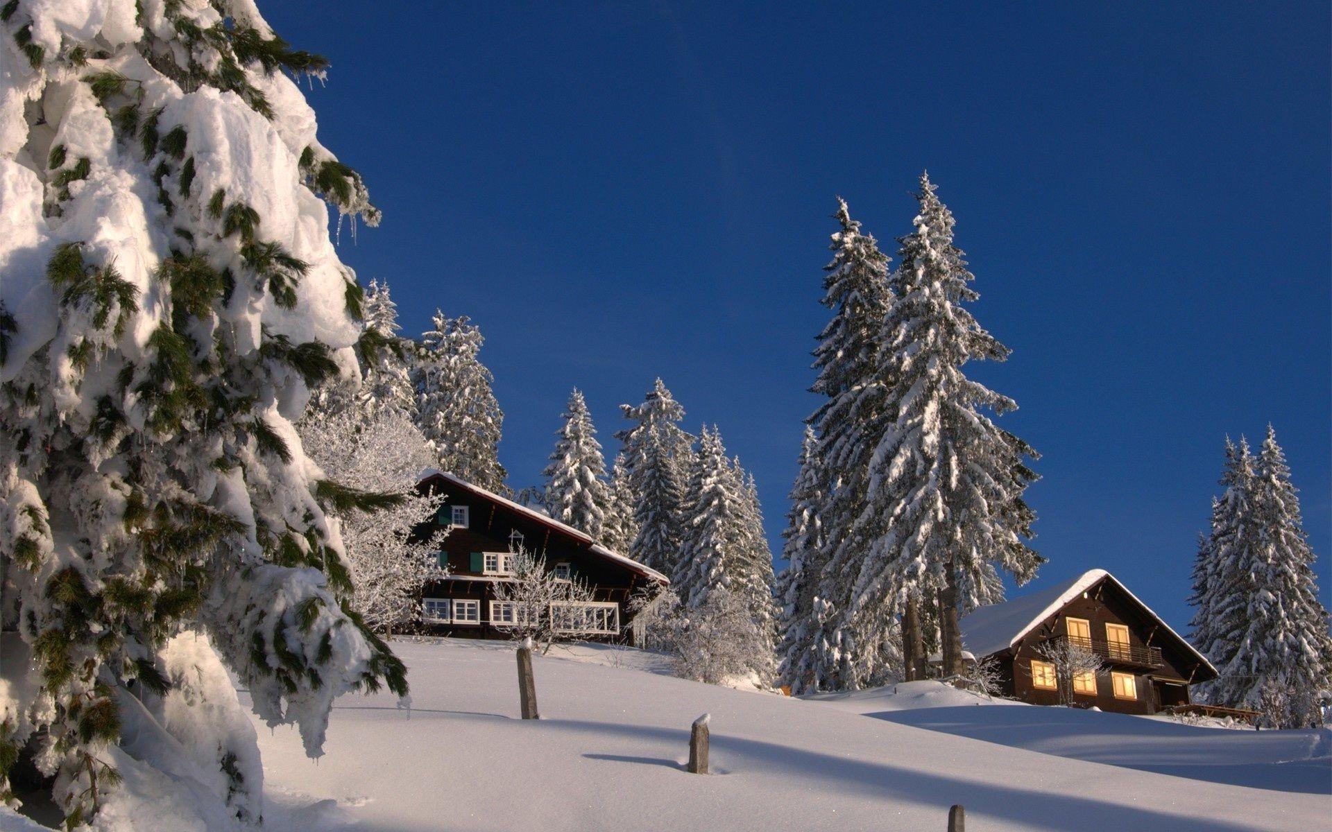 фото зимы красивые для рабочего стола интересно