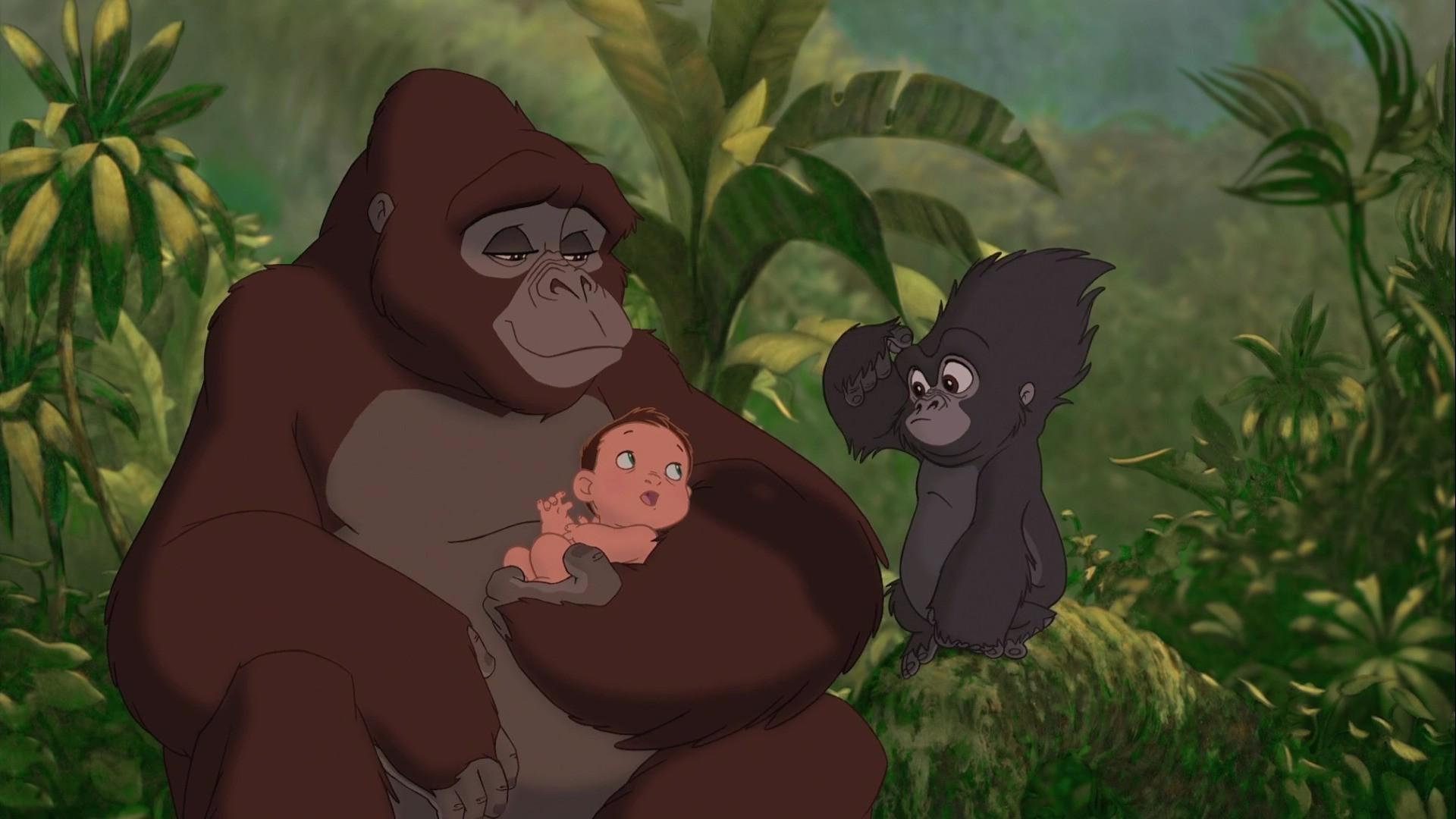 полянки картинки горилл из тарзана человек