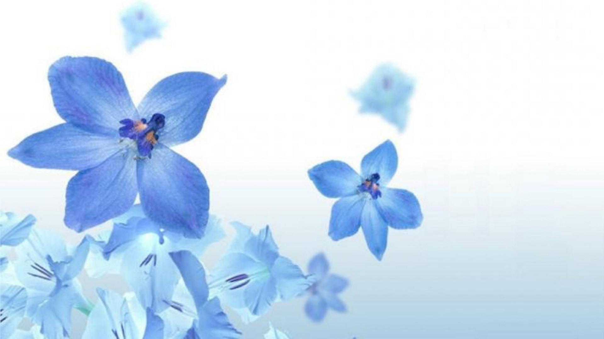 Открытки синий-белый, победы объемные