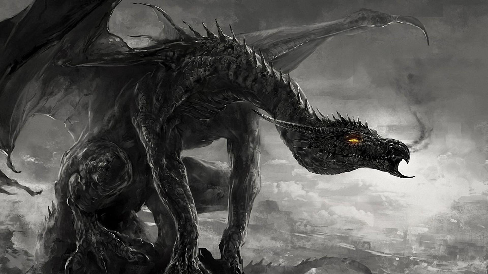 Пусть, картинка с черным драконом