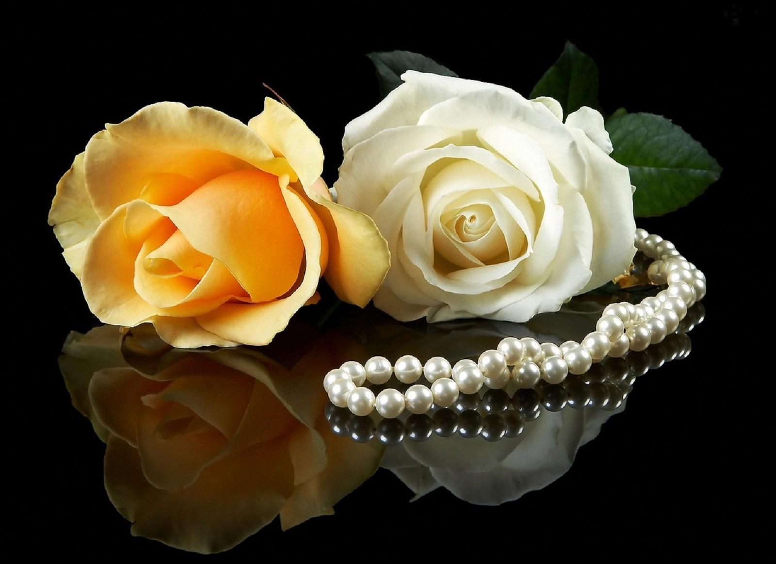 обои на рабочий стол розы и жемчуг скачать бесплатно № 126457 загрузить