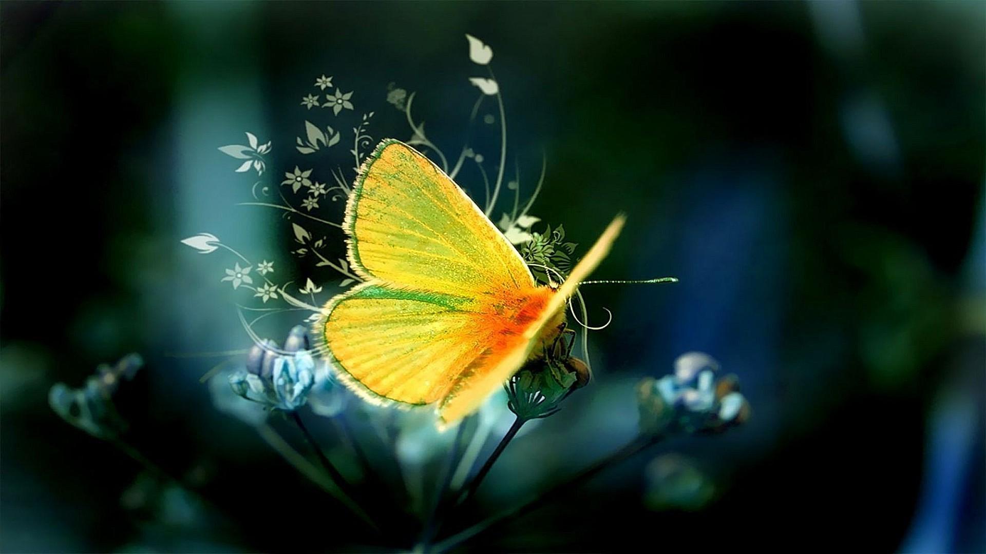 Гусеница на цветке в хорошем качестве