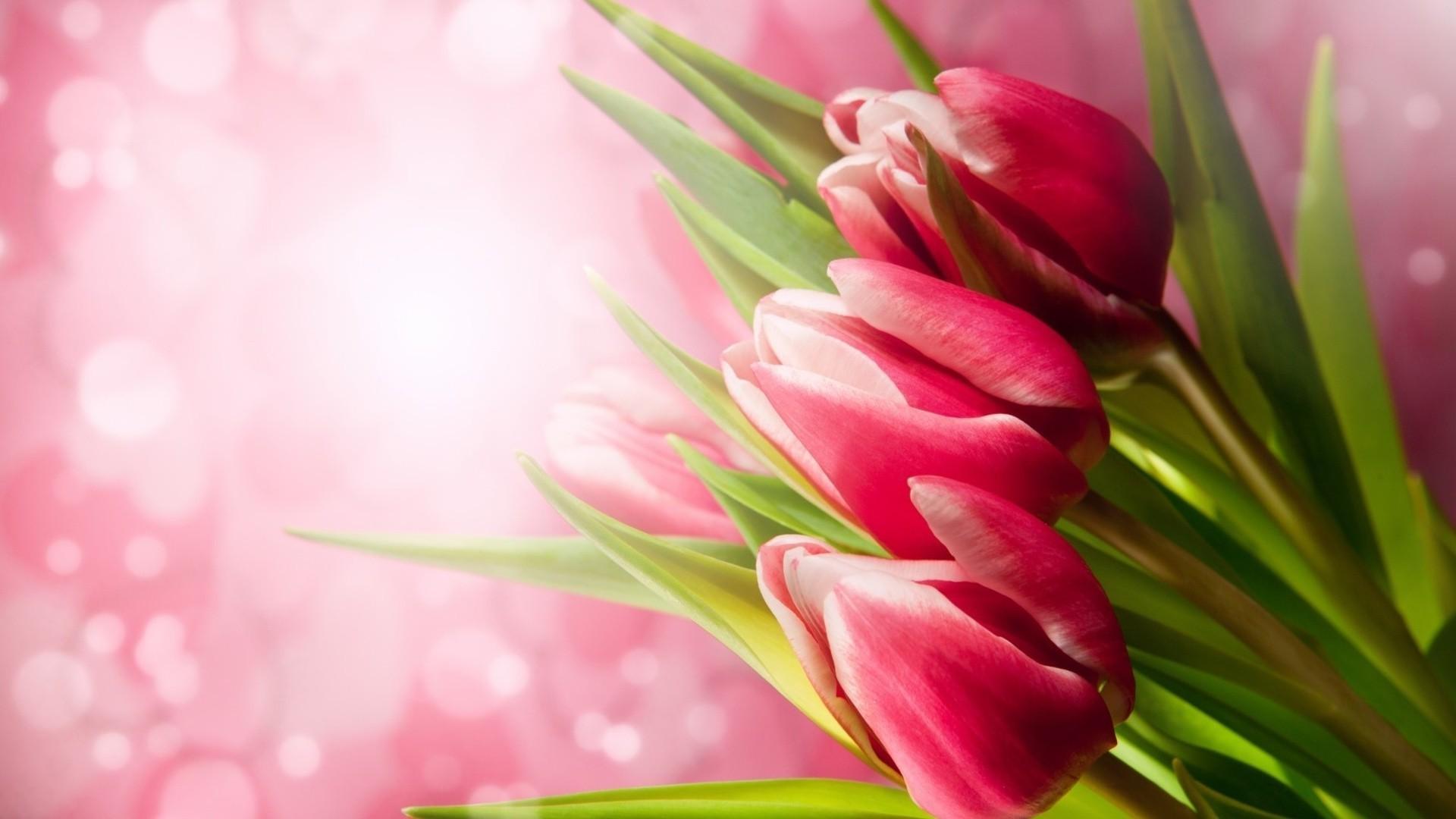 Открытки с днем рождения с весенними цветами женщине, комплименты для детей