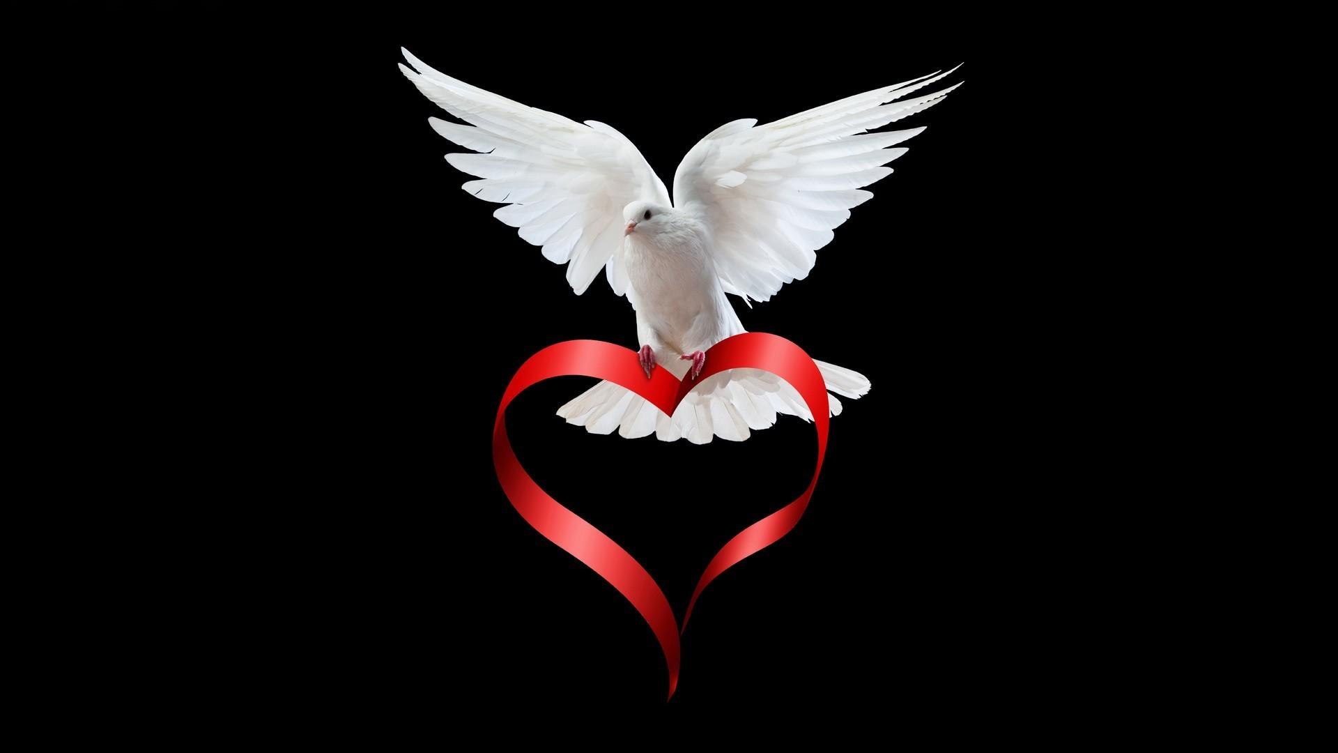 любовь сердце белое  № 1590566 загрузить