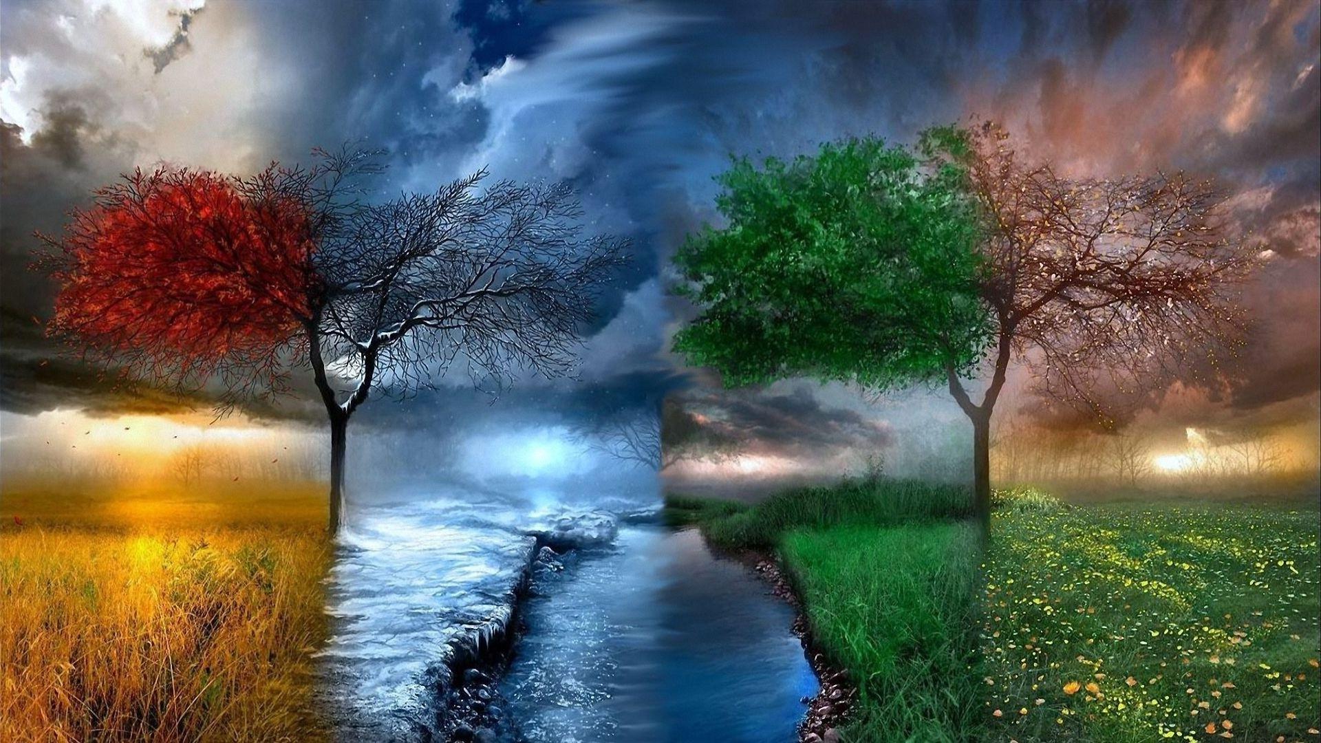 Обои пруд парк скамья осень туман картинки на рабочий