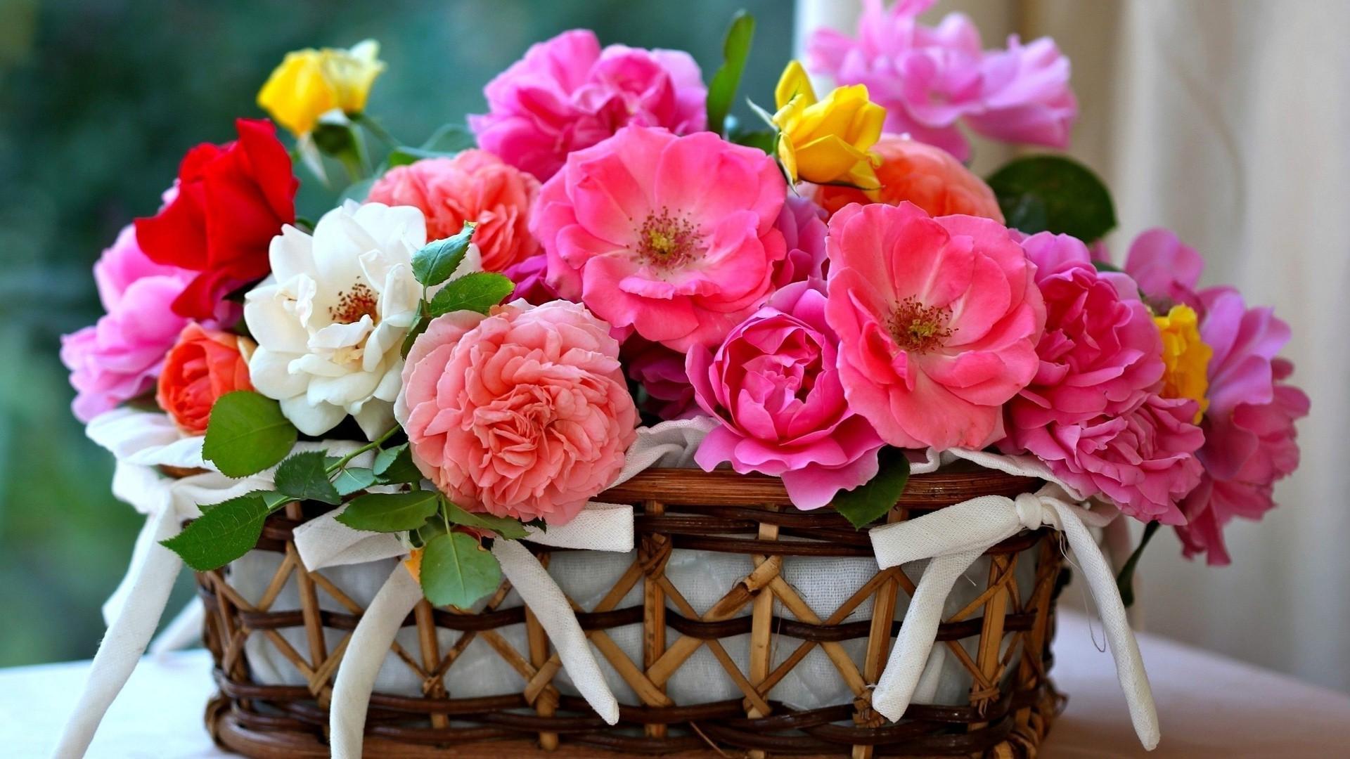 природа цветы корзина загрузить