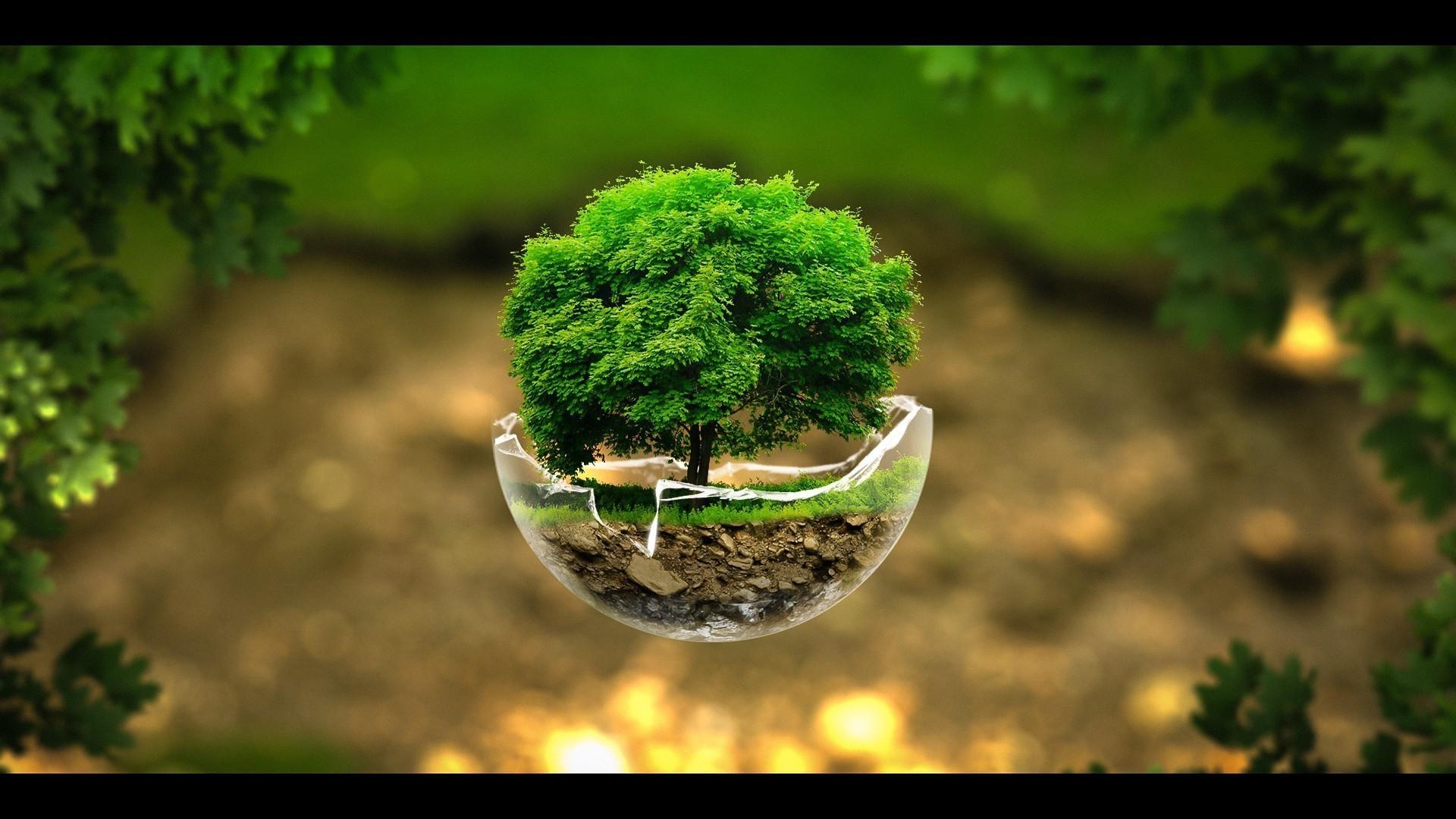 экология картинки высокого качества обязательно использовать