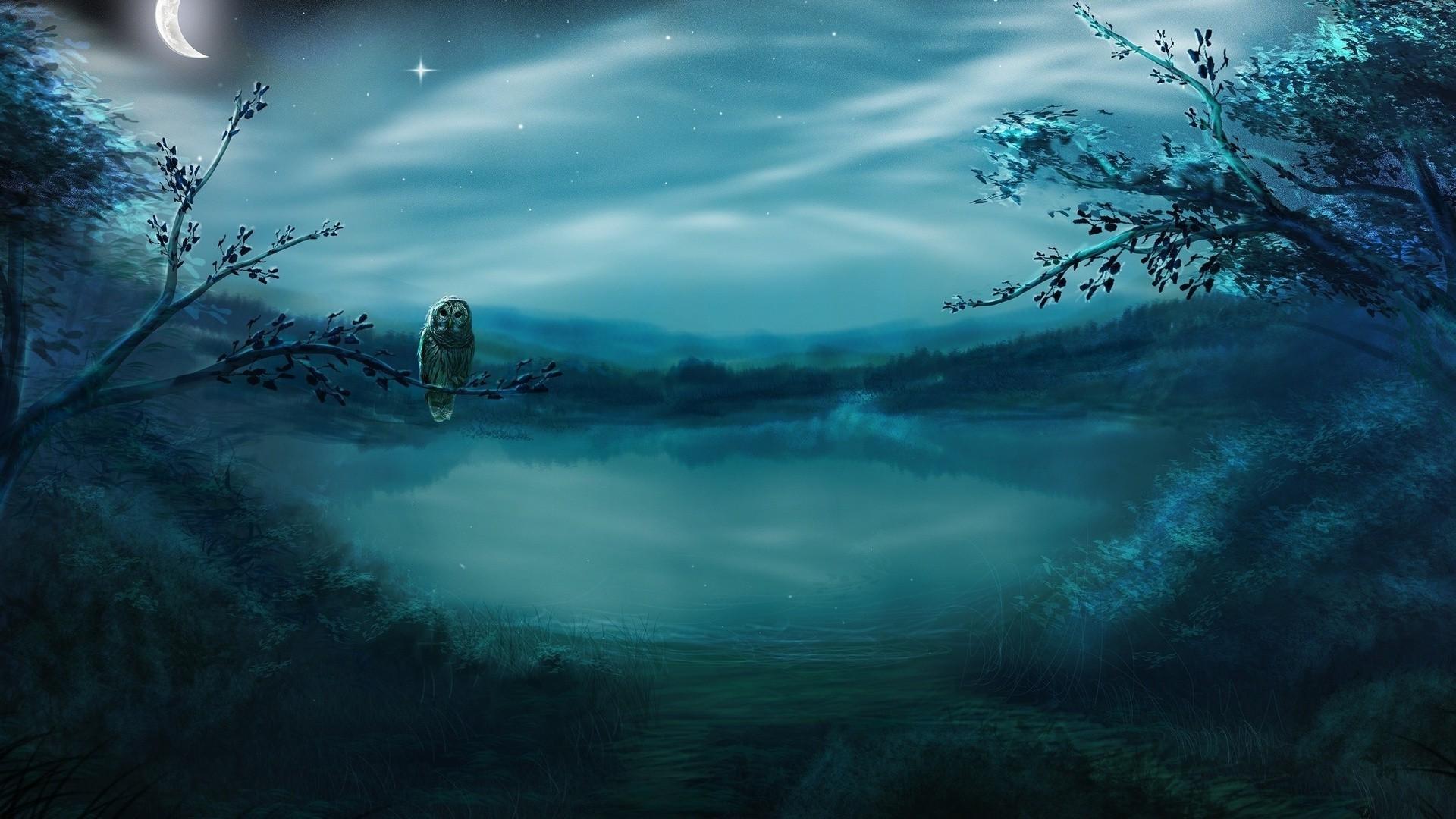 Картинки на рабочий стол на весь экран подводный мир 8