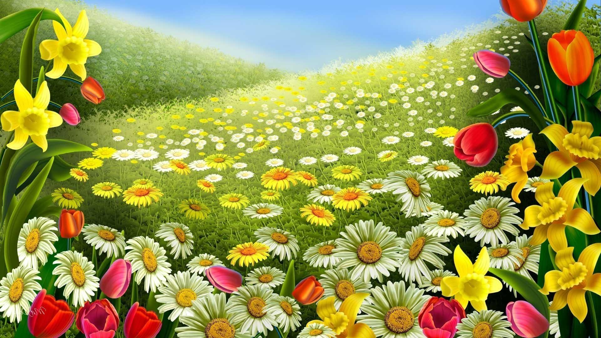 Картинки цветов на рабочий стол во весь экран » m 8
