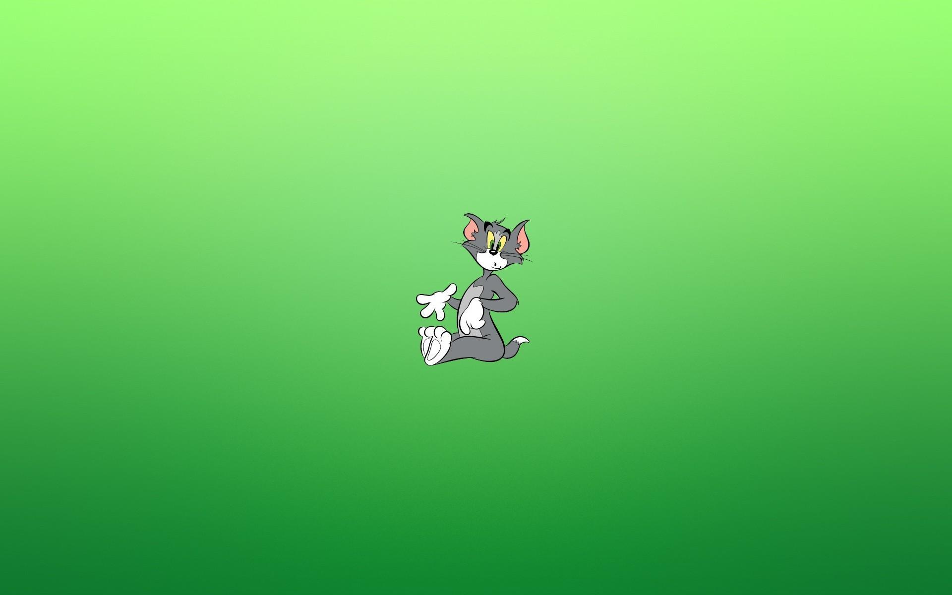 Картинки кот удивленный