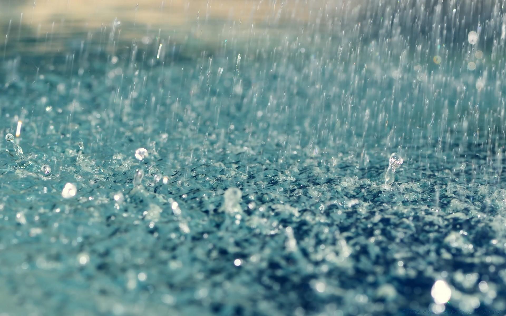 Обои на рабочий стол зеленая трава идет дождь на стекле