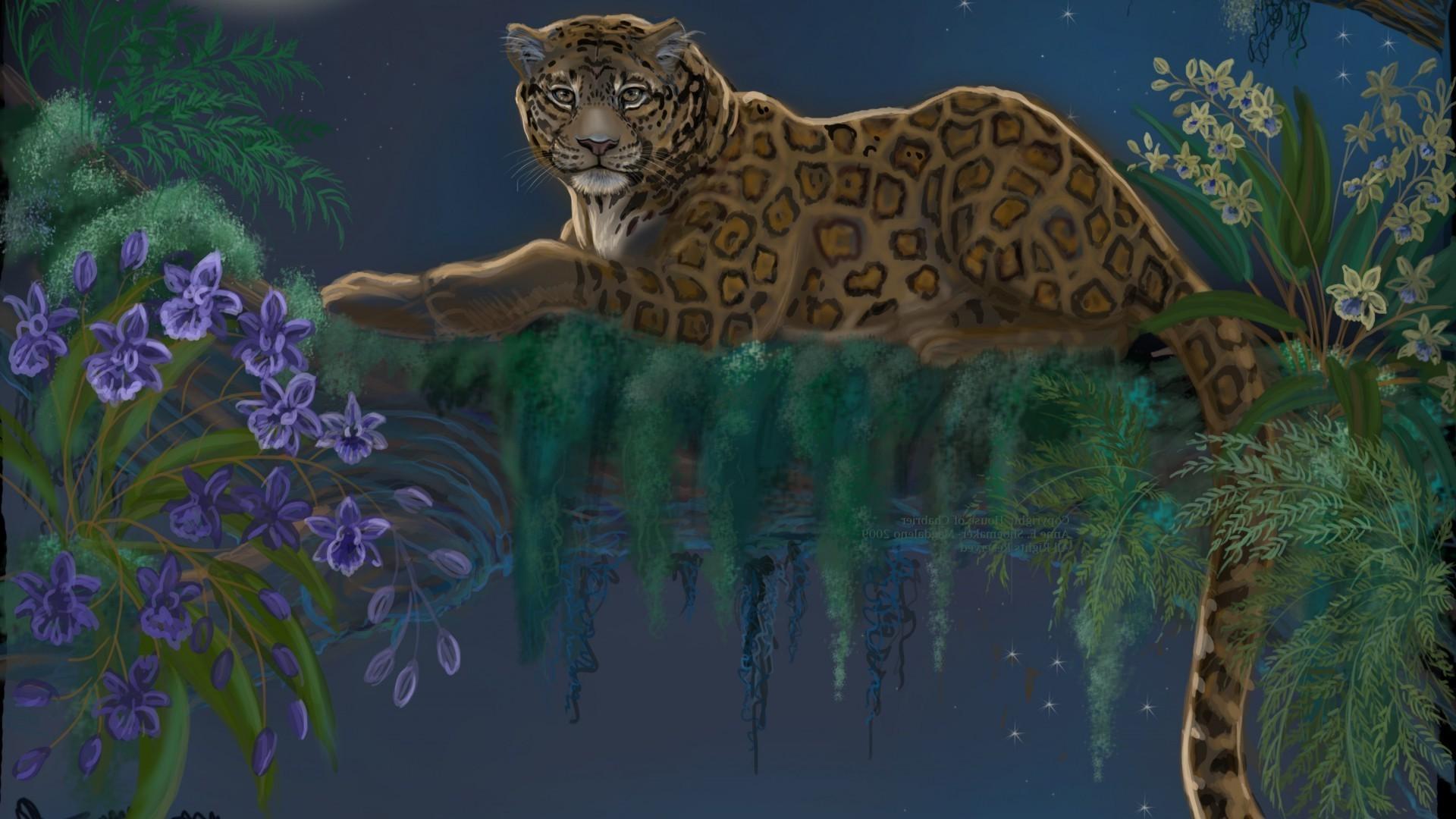 Очень красивые картинки с животными ночью, картинки