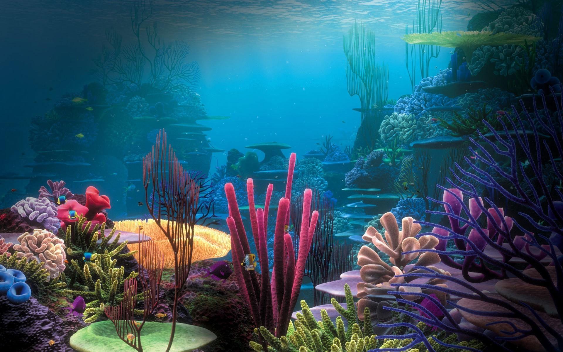 Обои для рабочего стола обои подводного мира