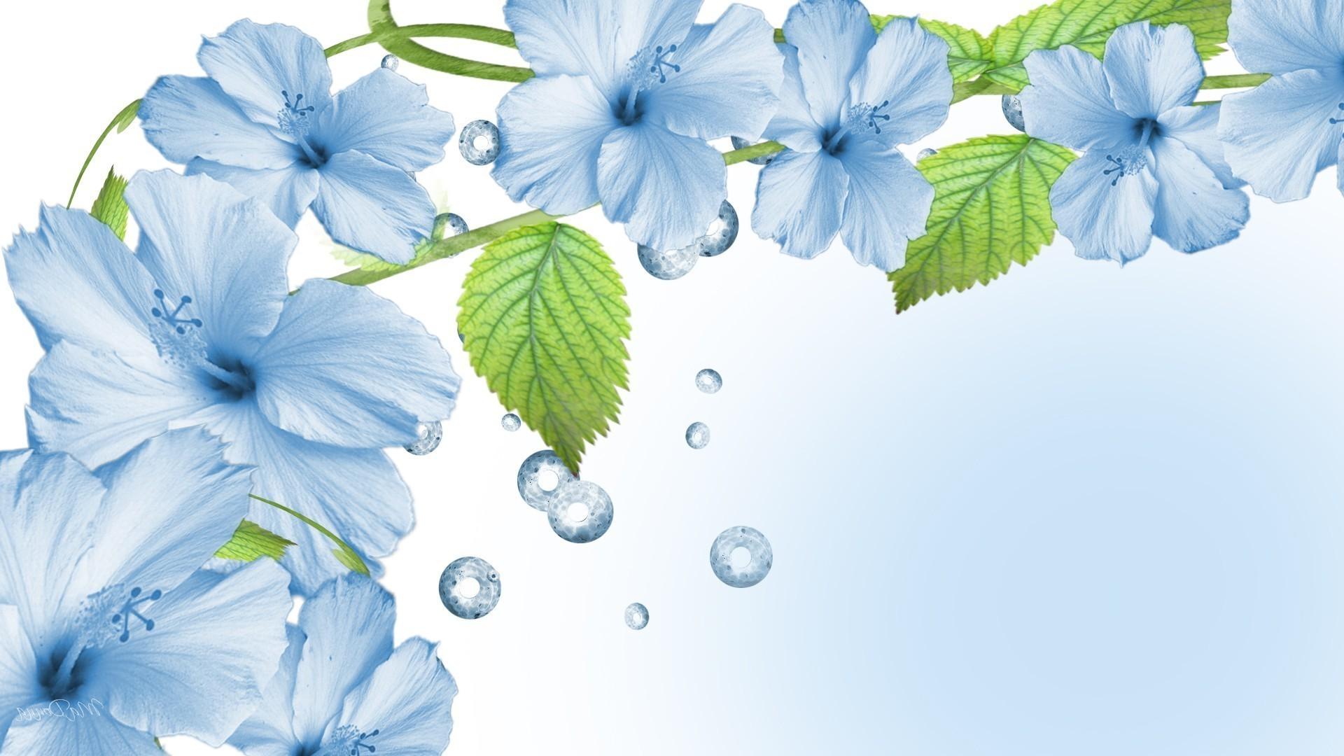 Обои голубые цветы на рабочий стол