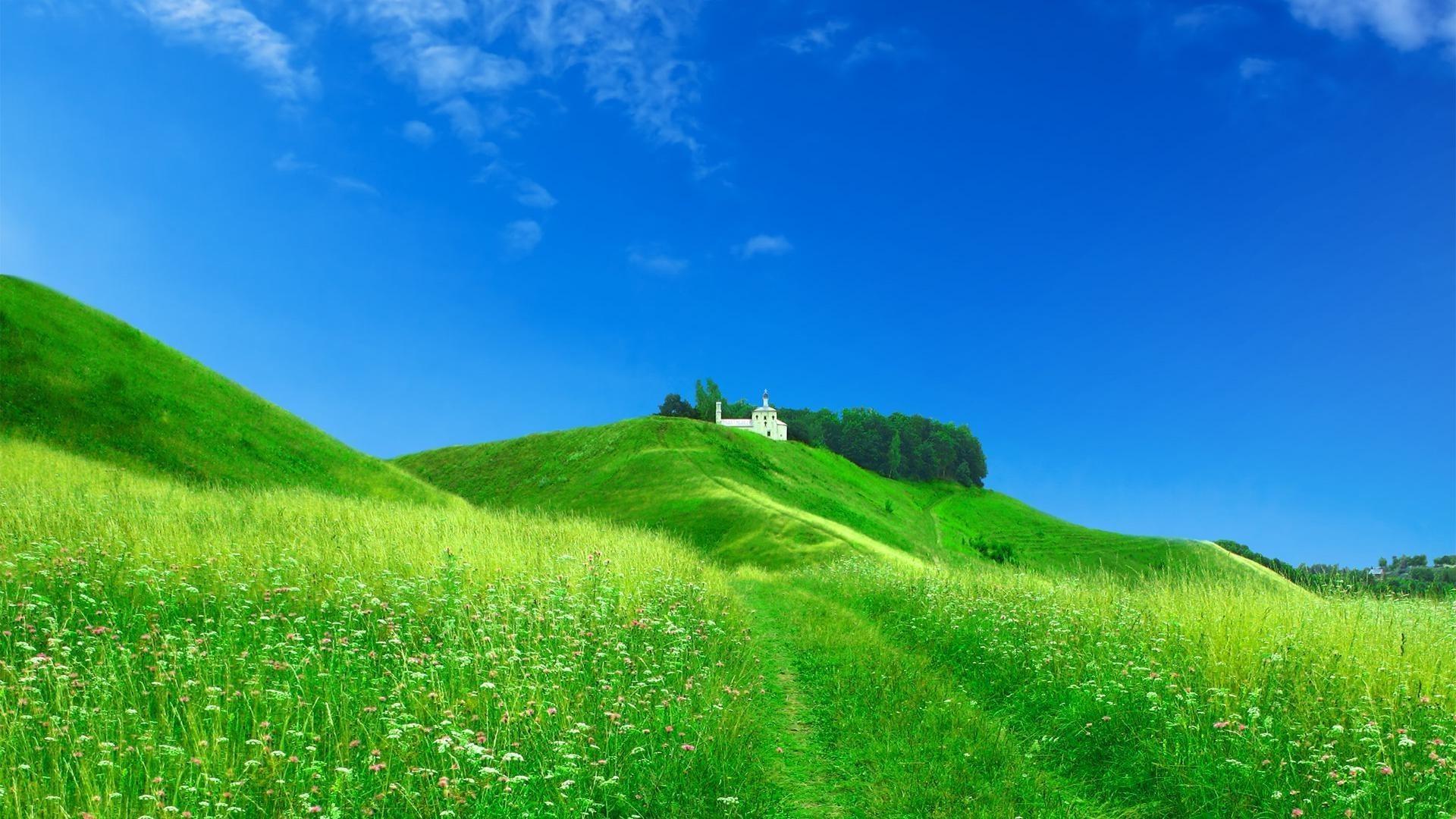 холм даль трава анонимно