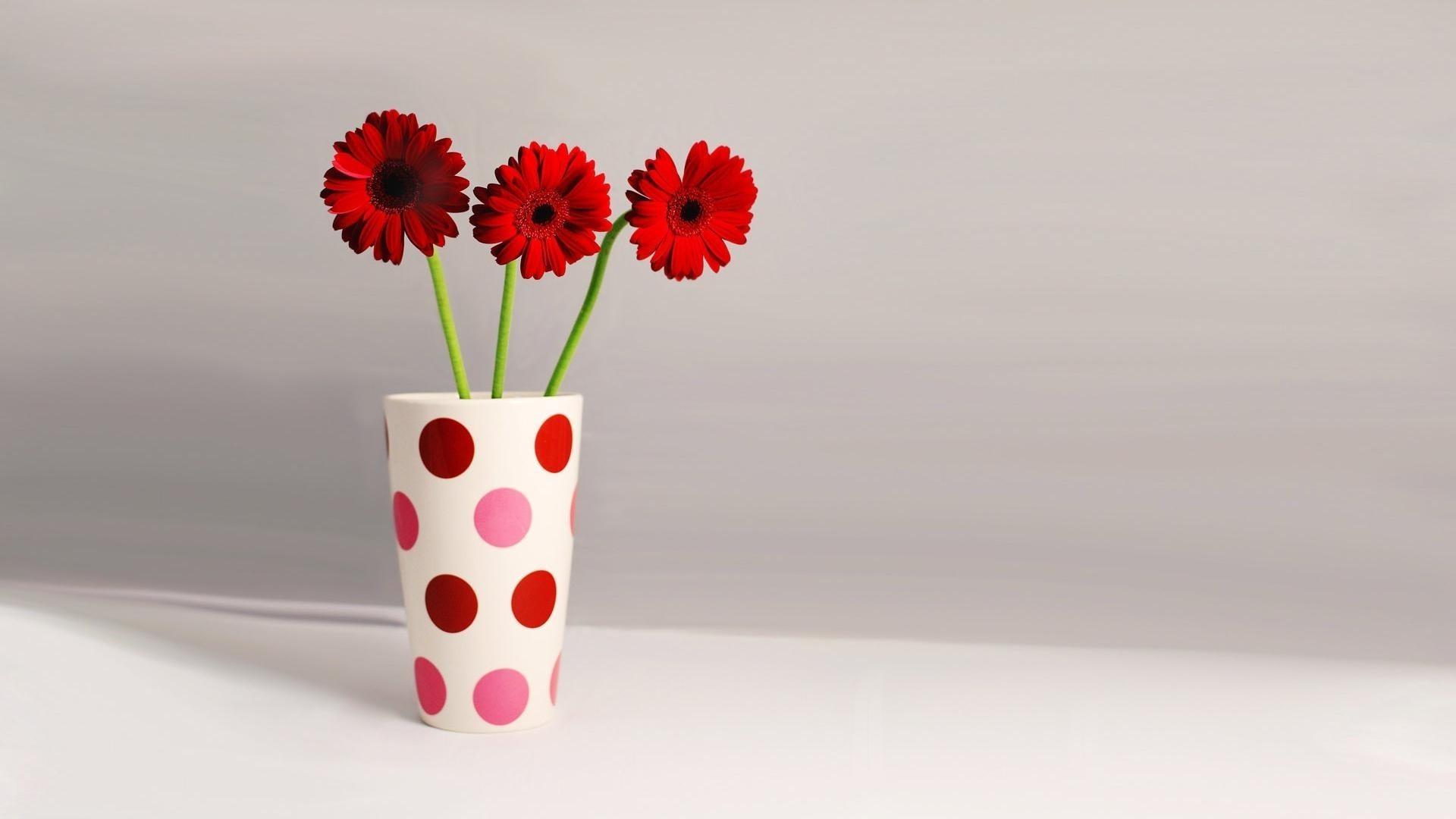 природа цветы ваза  № 1734187 бесплатно
