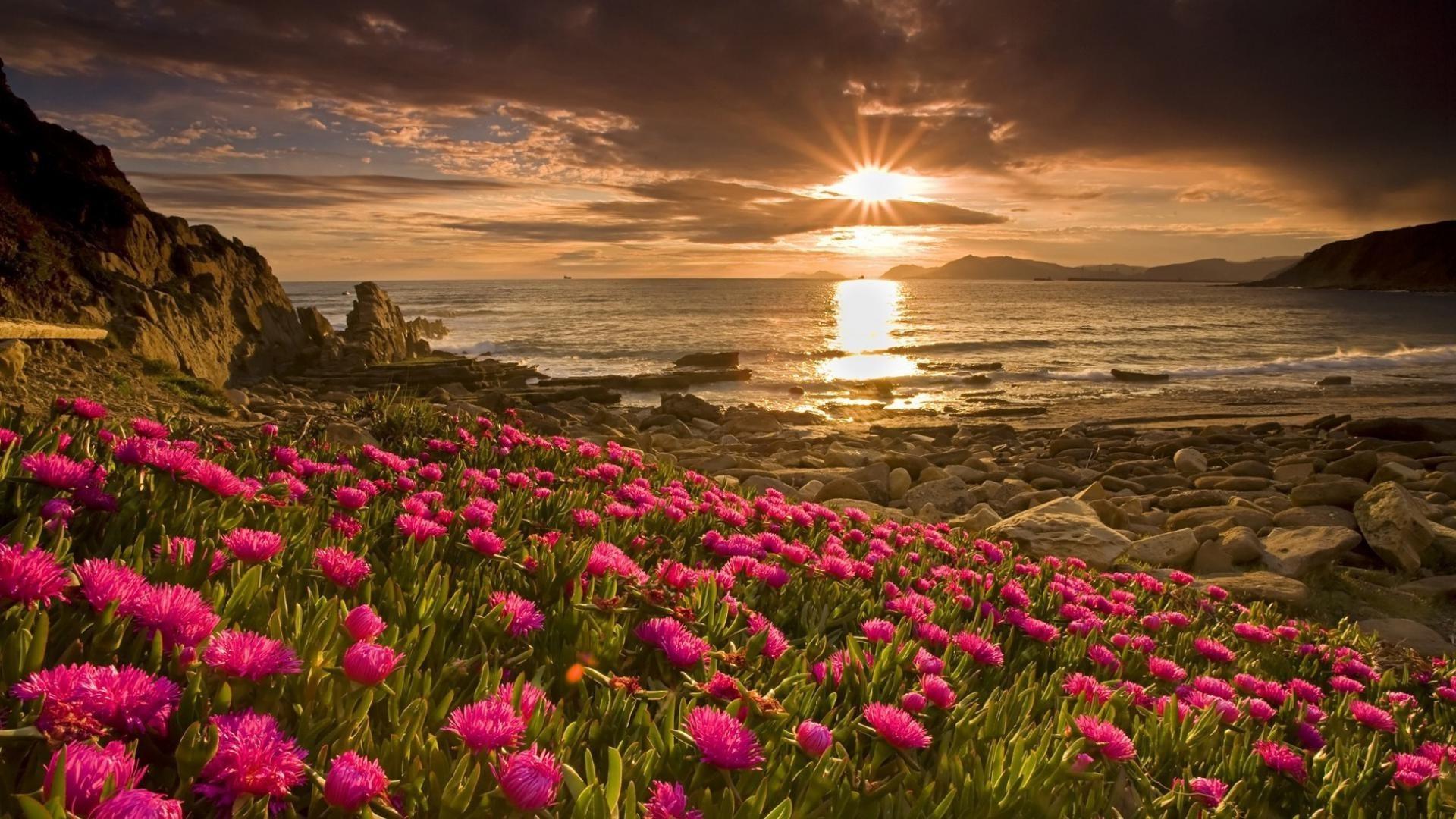 Красивые картинки природы с цветами шикарными, юбилеем татарском