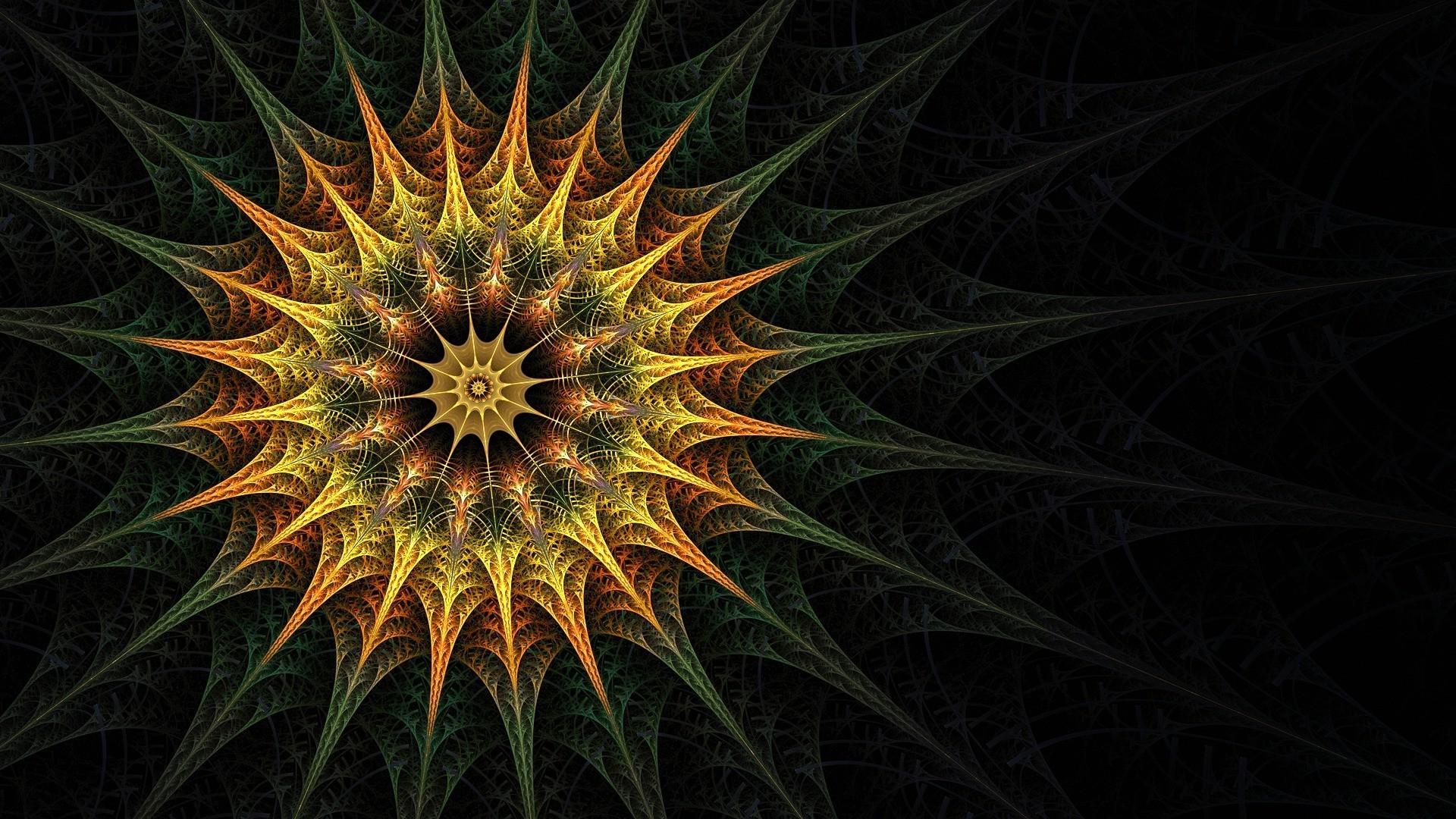 Соцветие абстракция скачать обои на