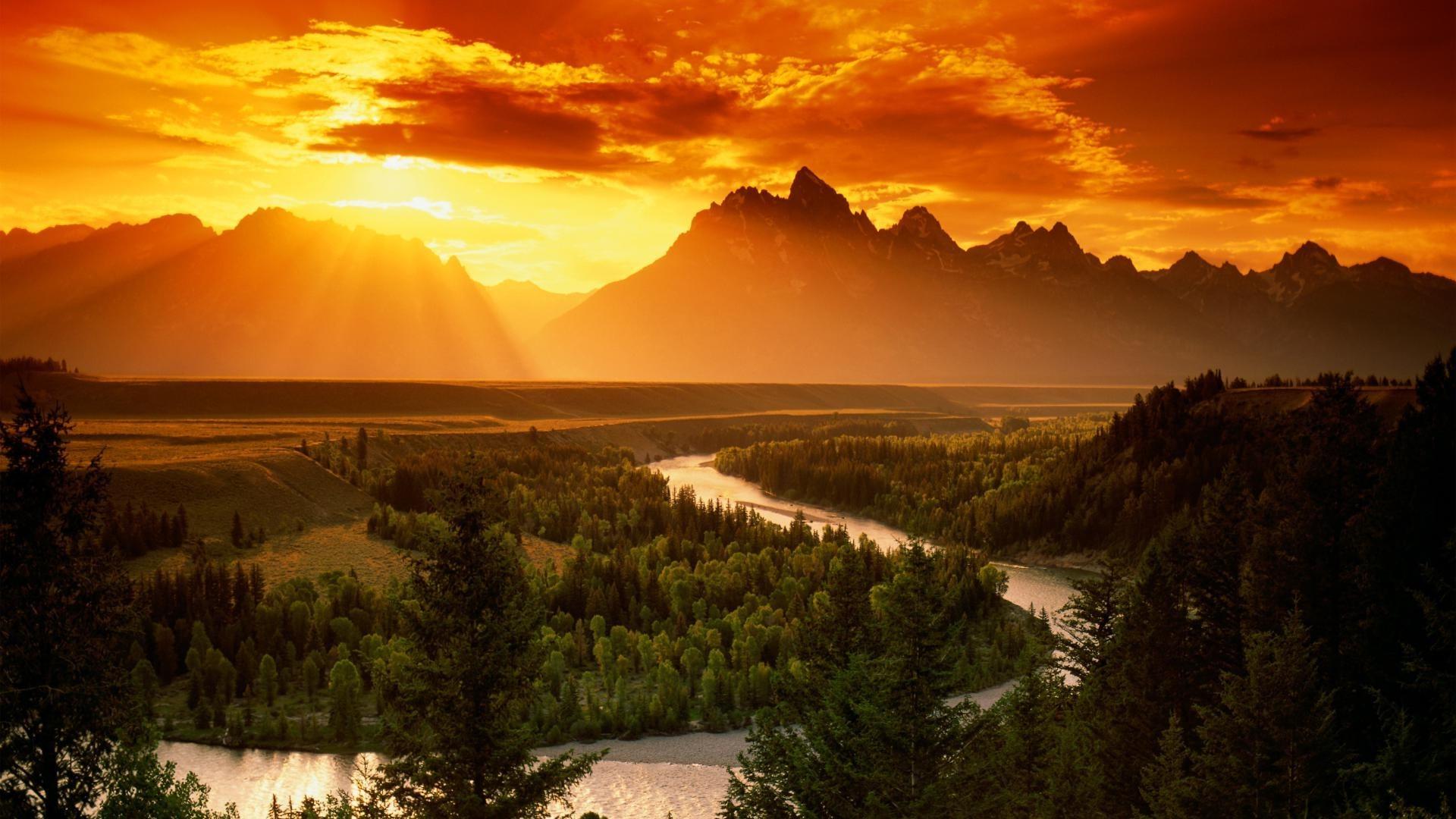 Природа, горы, поляна, цветы, река