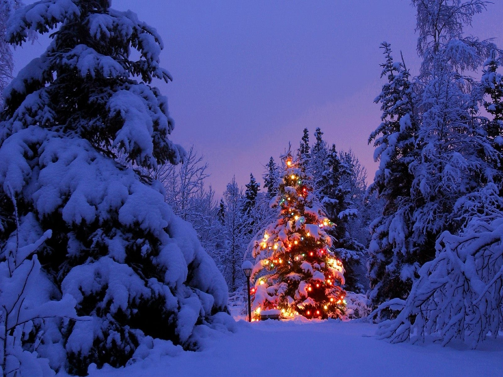 Раскраски, картинки фото зима новый год