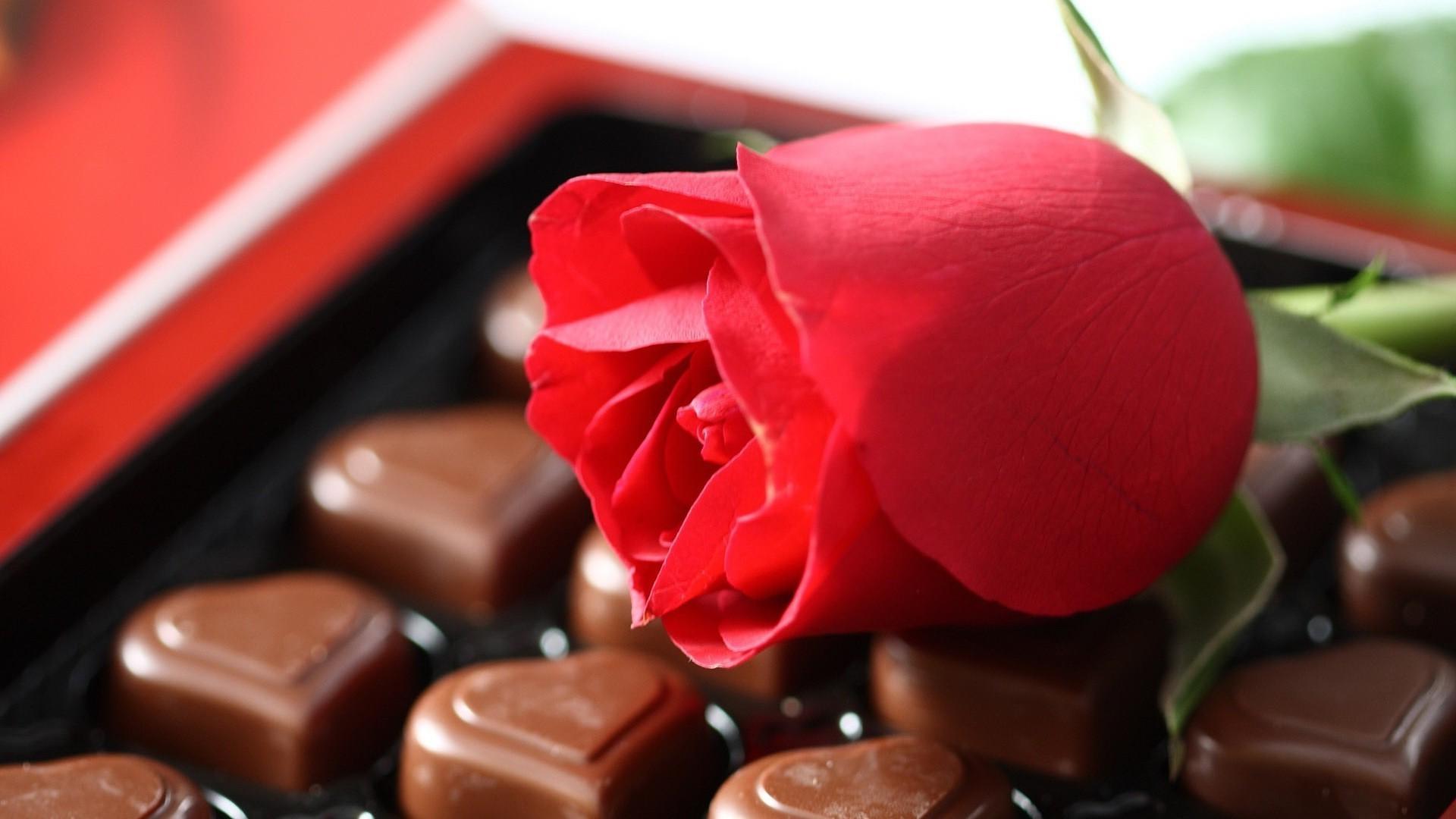 Спокойной ночи, цветы открытка шоколад