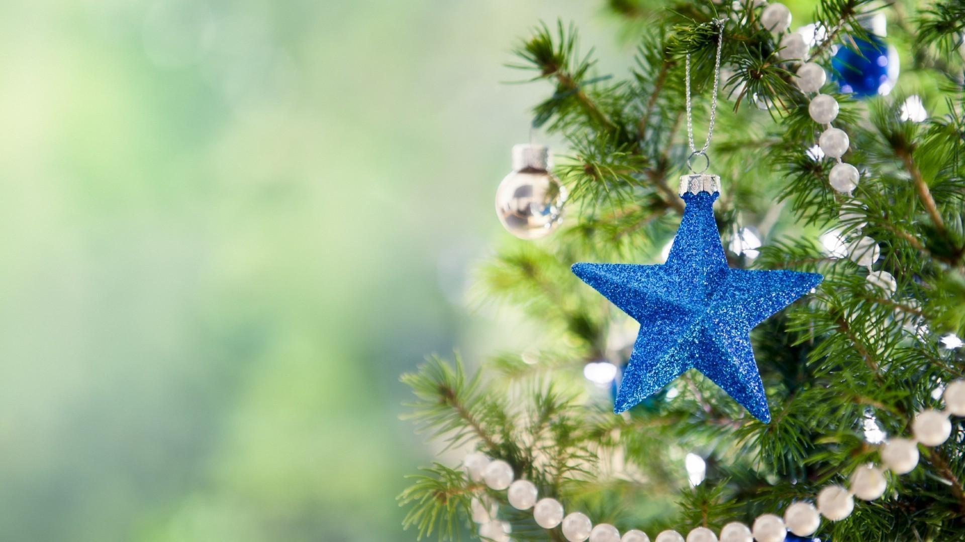 Ель украшения звезда Spruce decoration star скачать