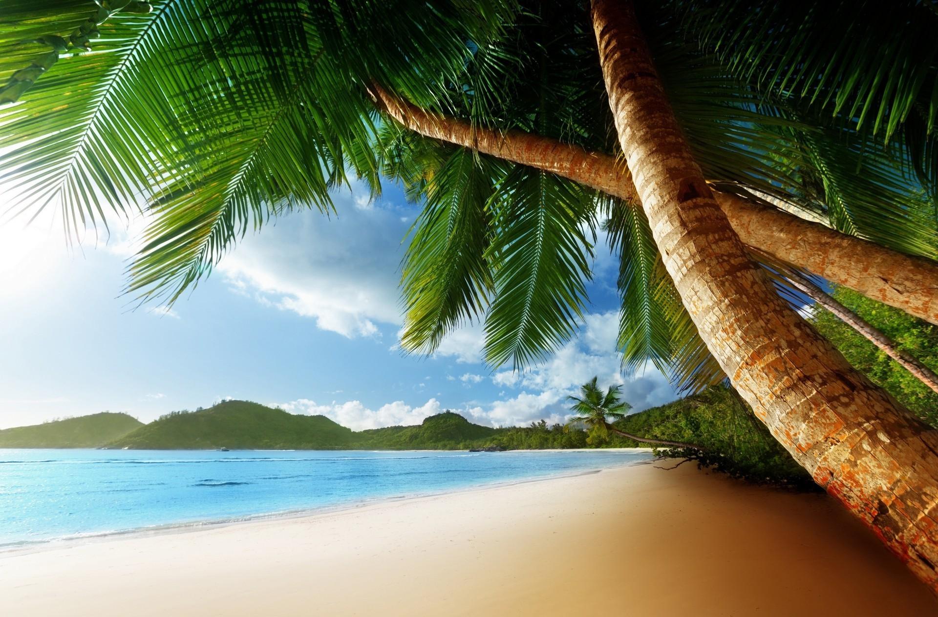 Картинка с надписью остров, день
