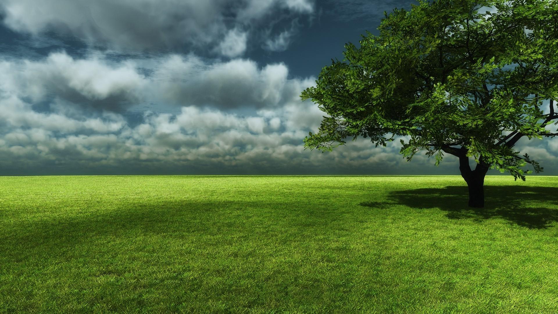 Картинки красивые небо природа зеленая деревья, класс прикольные слезы