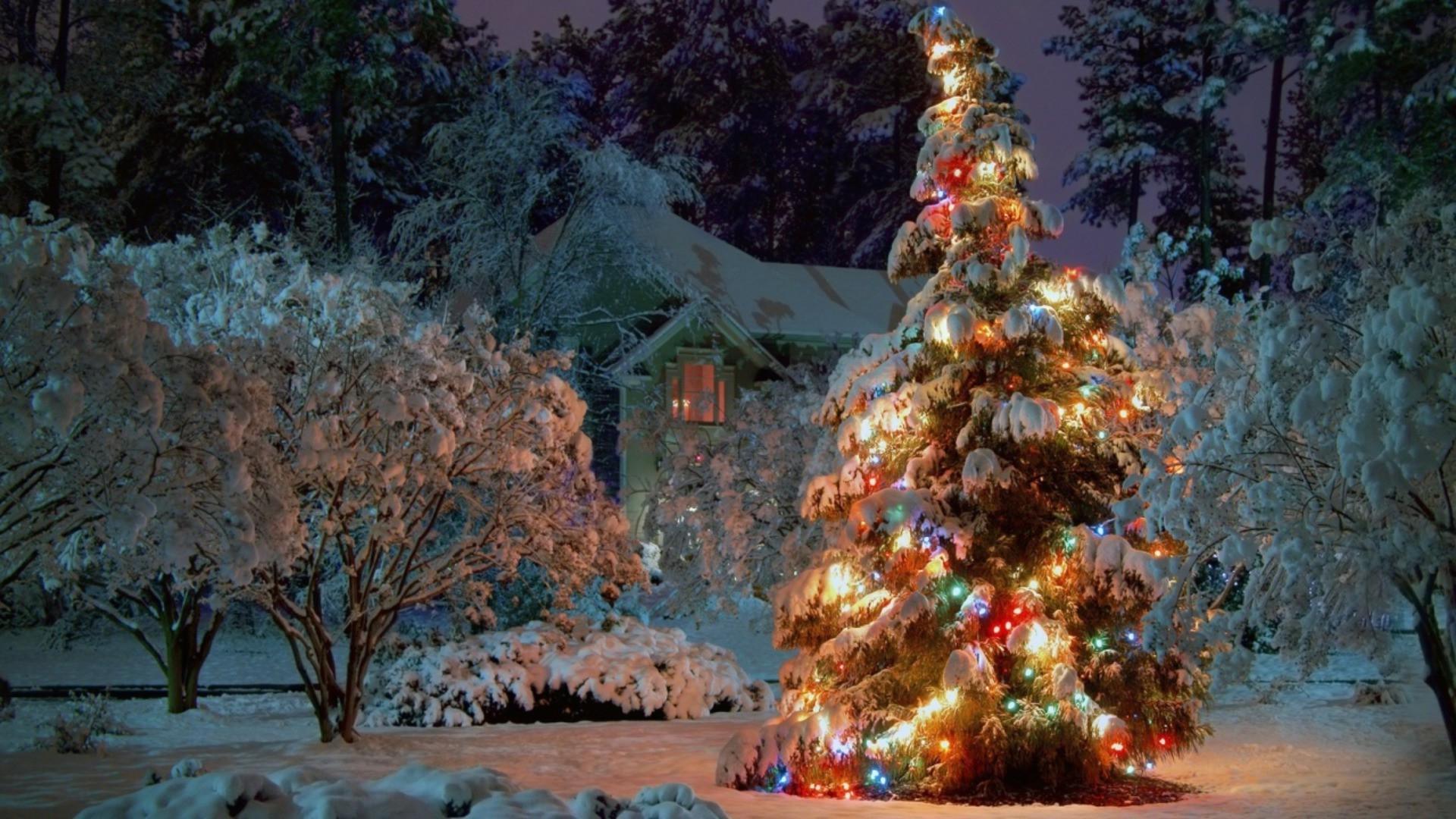 Домик ель огни новый год загрузить