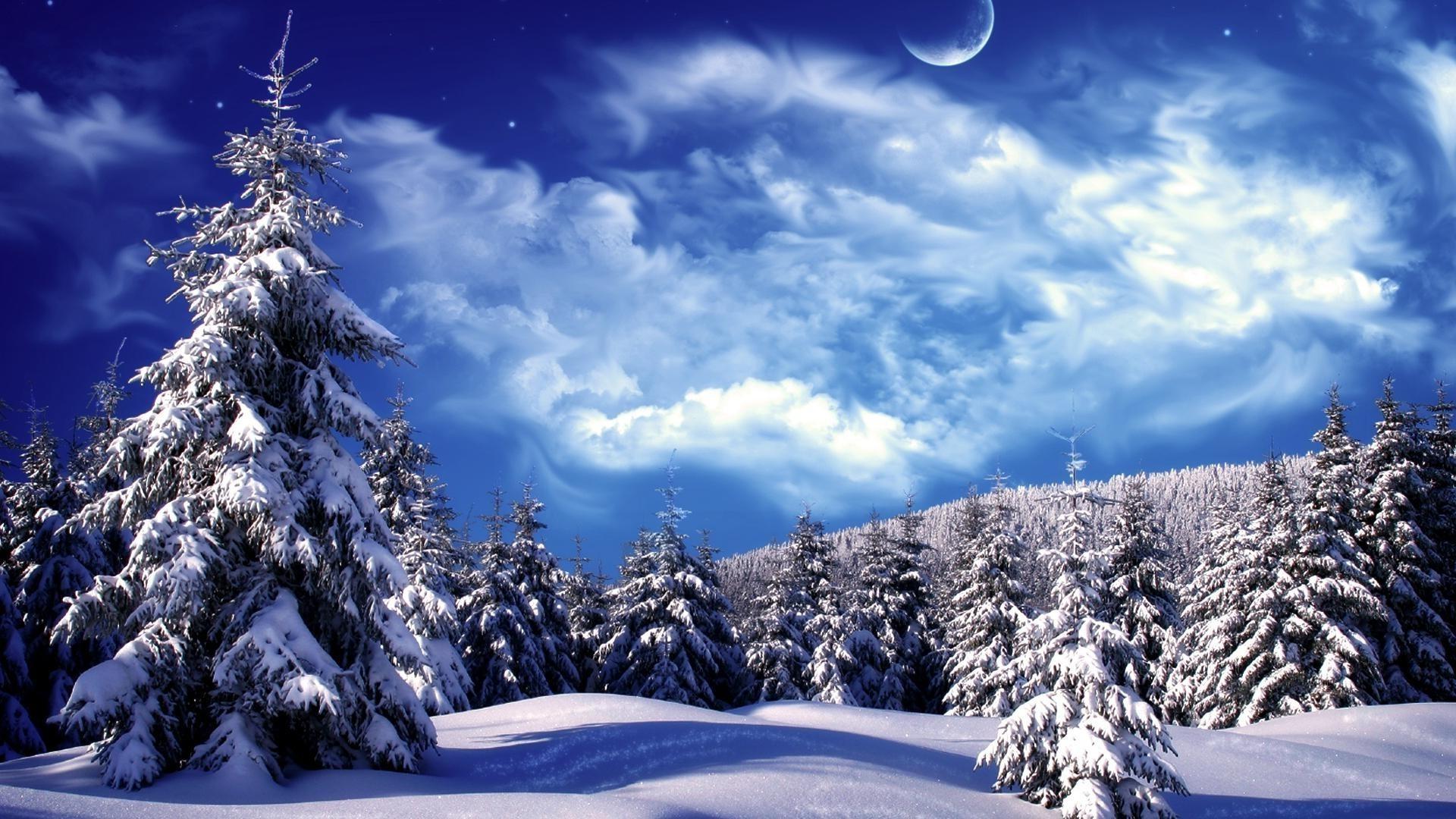 Beautiful winter wallpaper photos Winter pictures Pexels Free Stock Photos