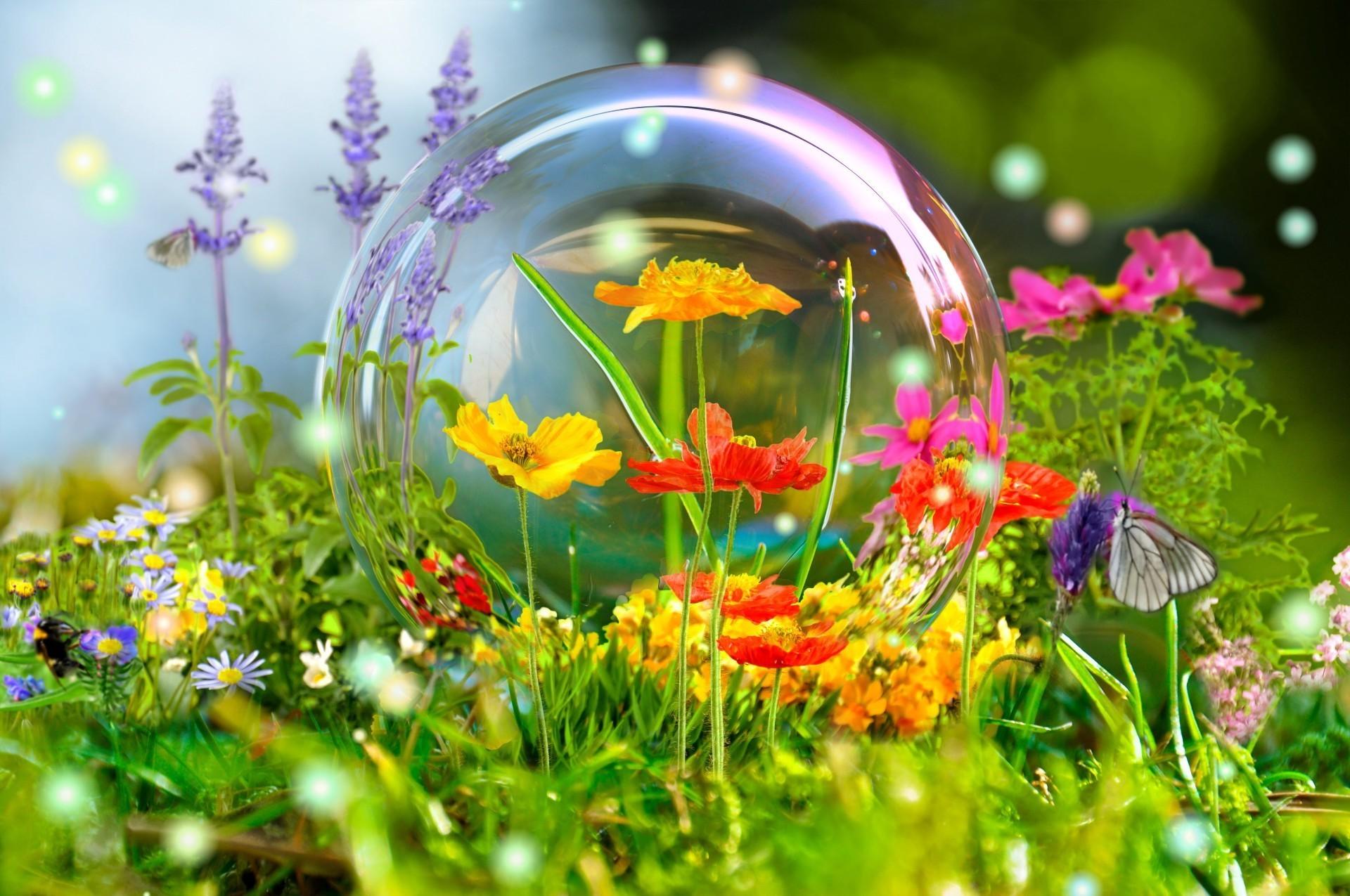 Самые красивые цветы фотообои