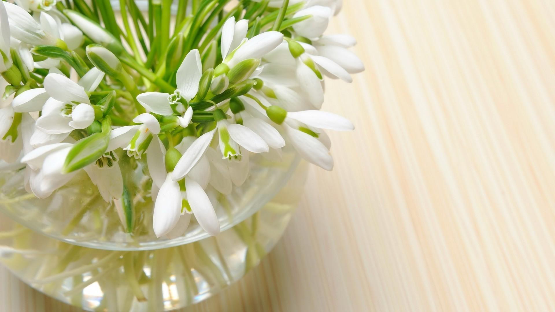 Открытка с днем рождения с тюльпанами и подснежниками, рождением первенца