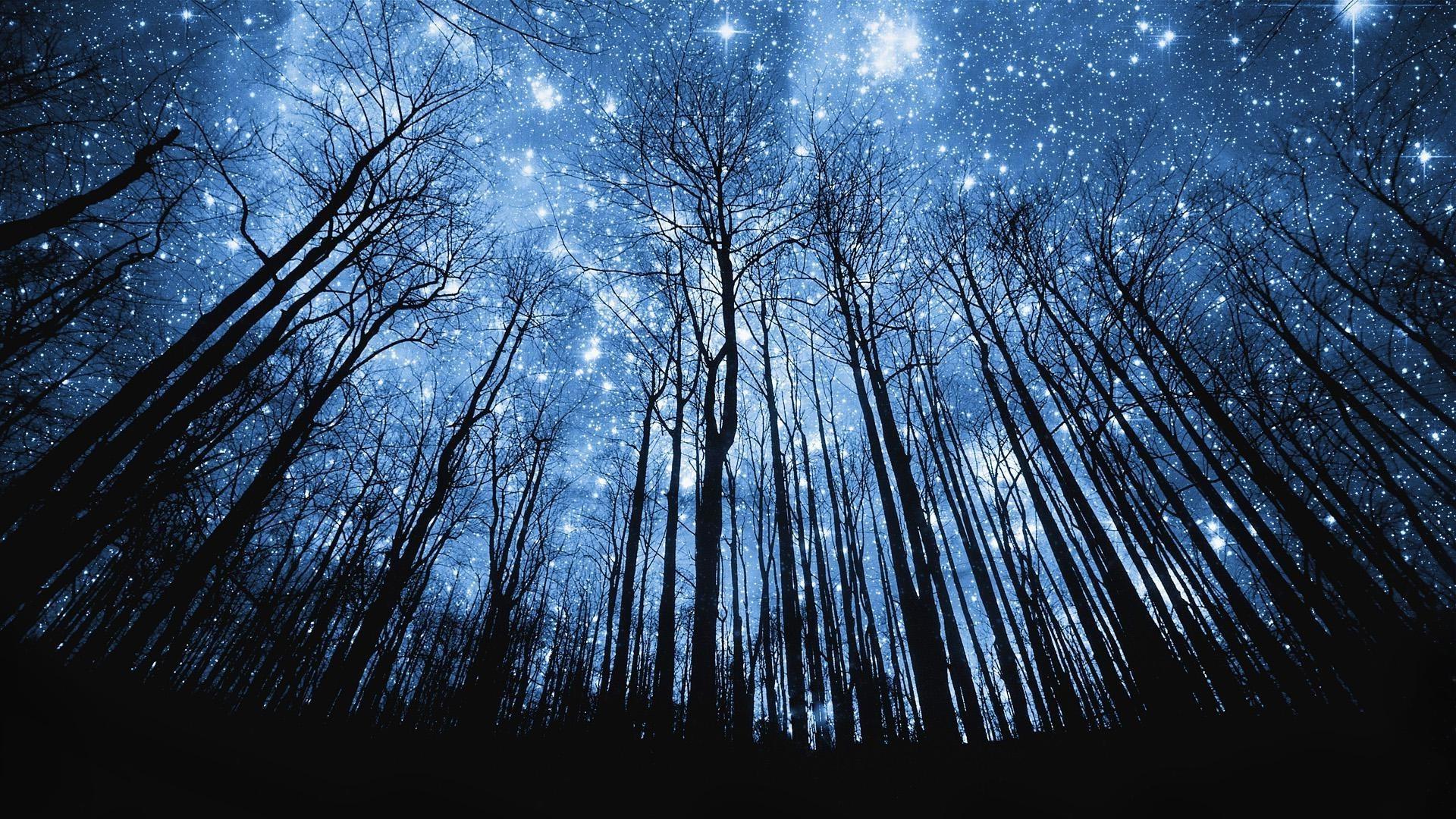 Звездное небо пейзаж