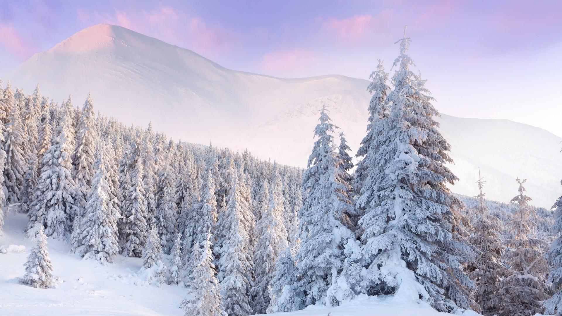 Картинки красивая зима