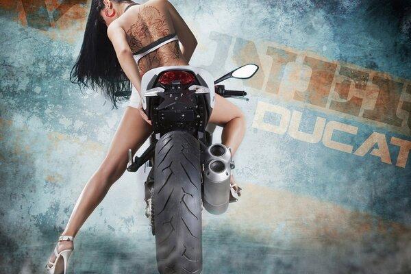 Обои мотоциклы, кроссовые, мотоцикл , раздел Спорт, размер ...