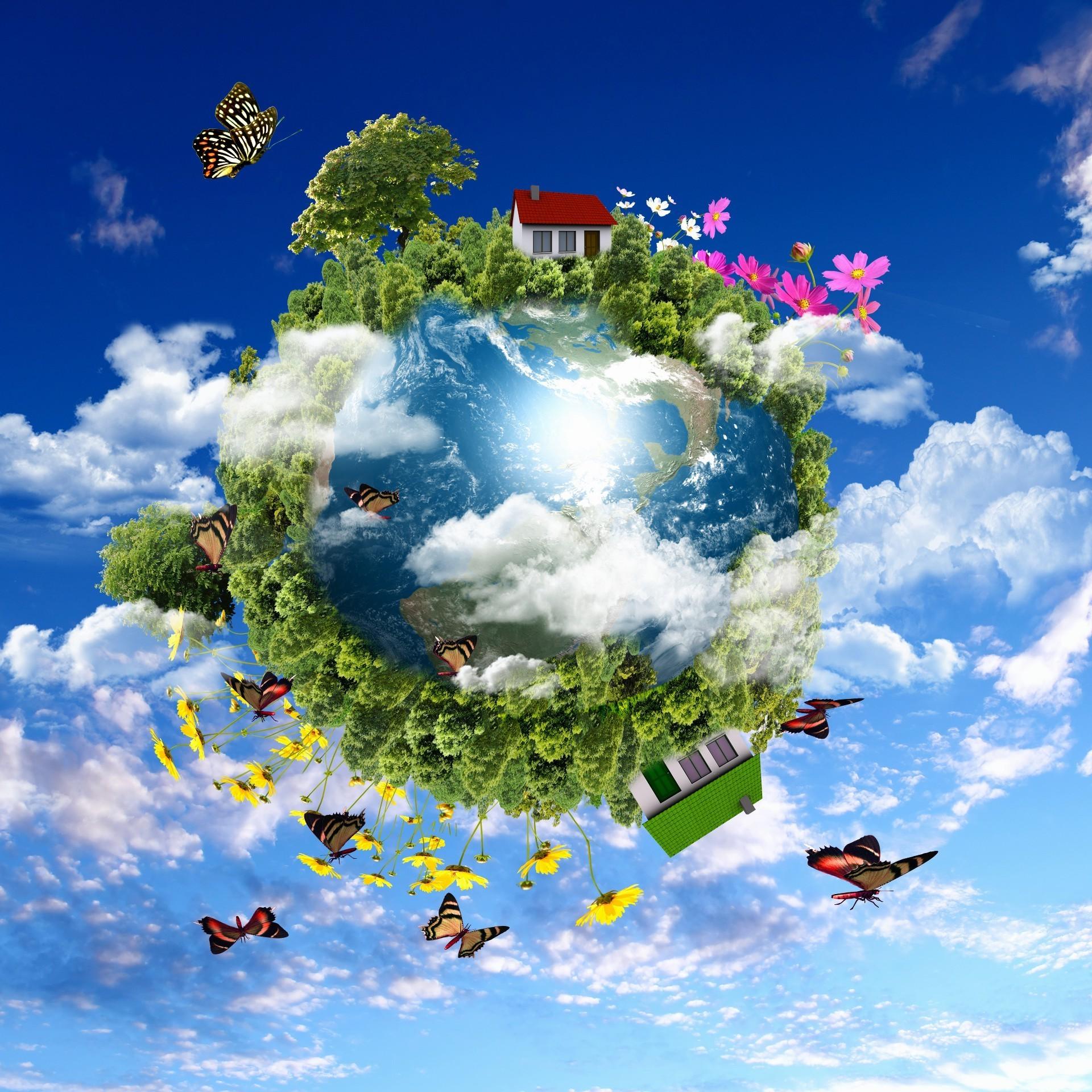 Удивительный букет для планеты земля, находка цветы