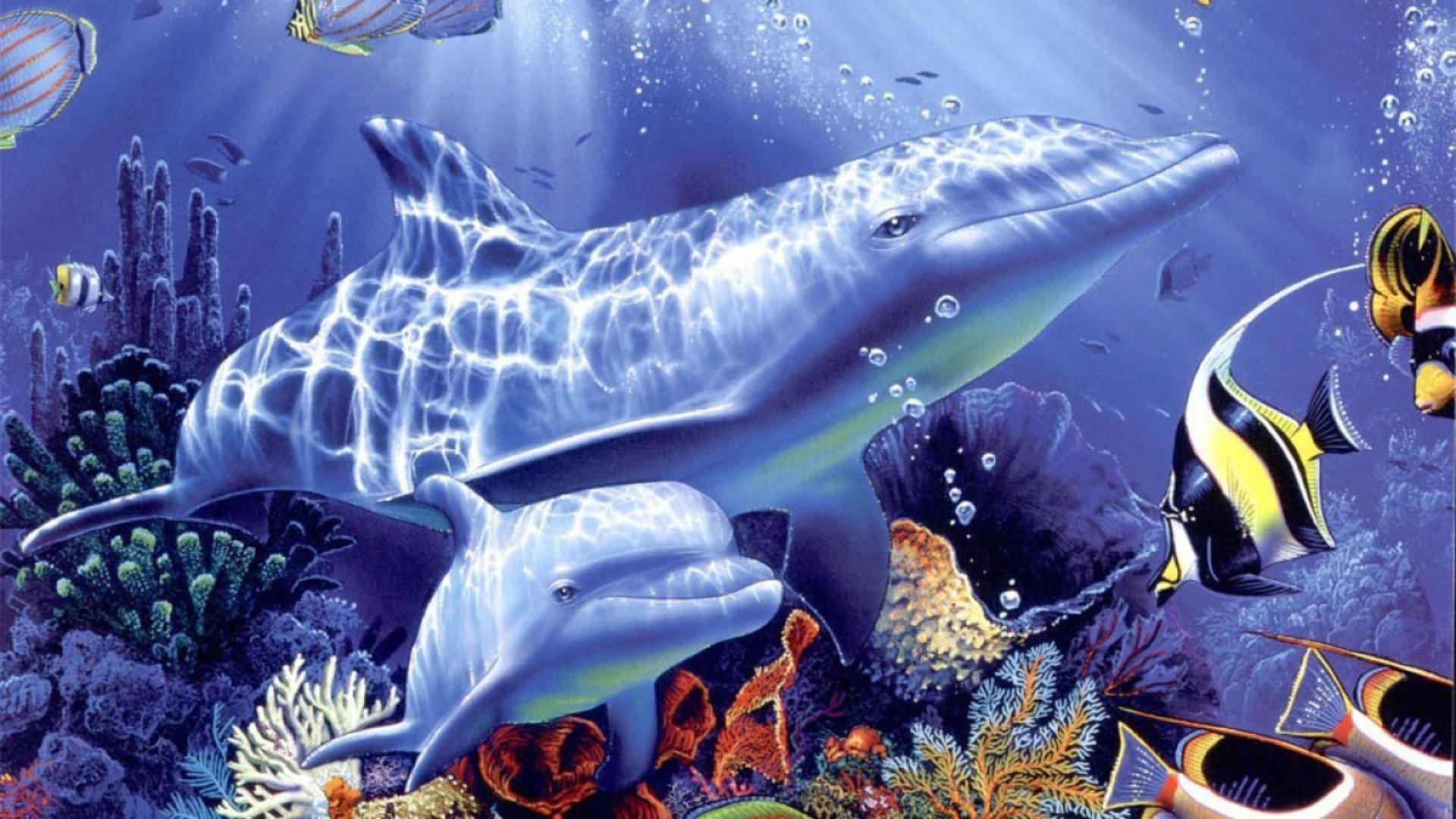 Картинки с морскими животными для детей, 2013 картинки надписью