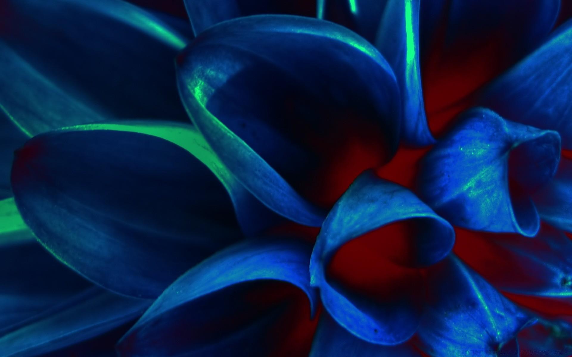 Красивая картинка красный и синий
