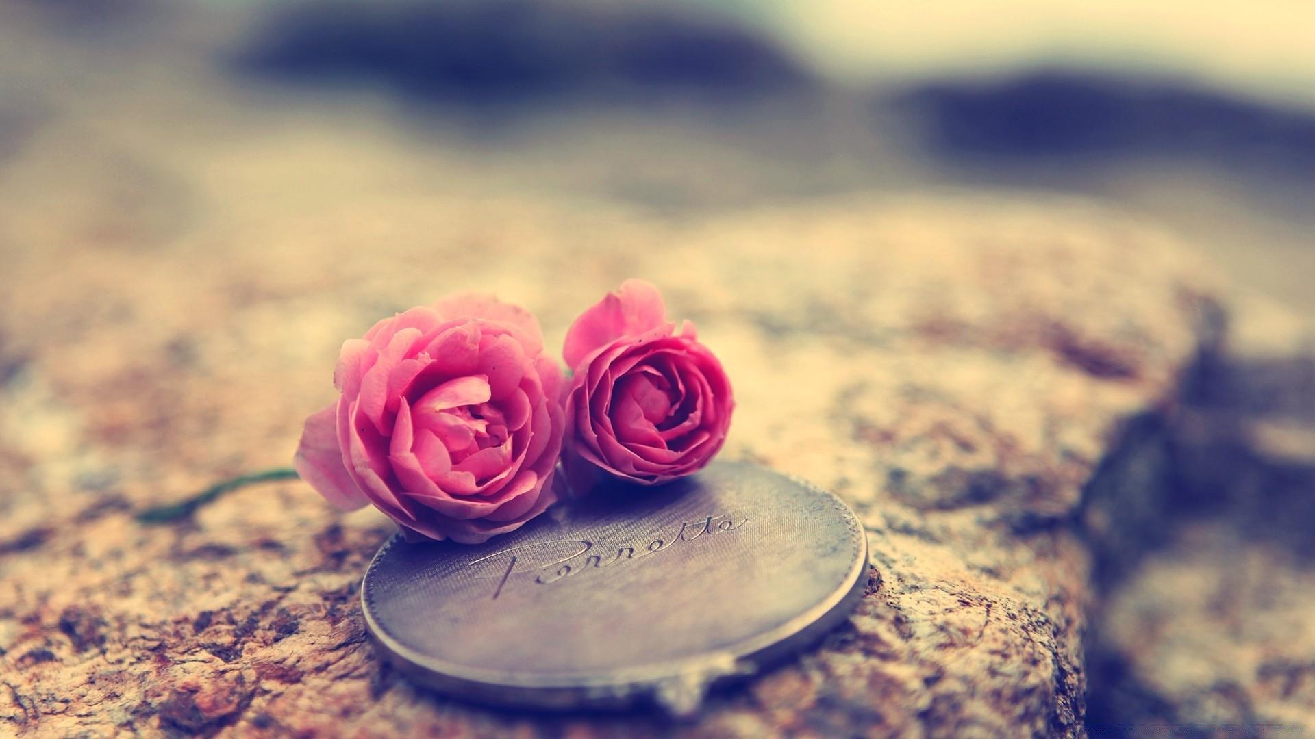 Мне, красивые картинки цветы для статуса со смыслом
