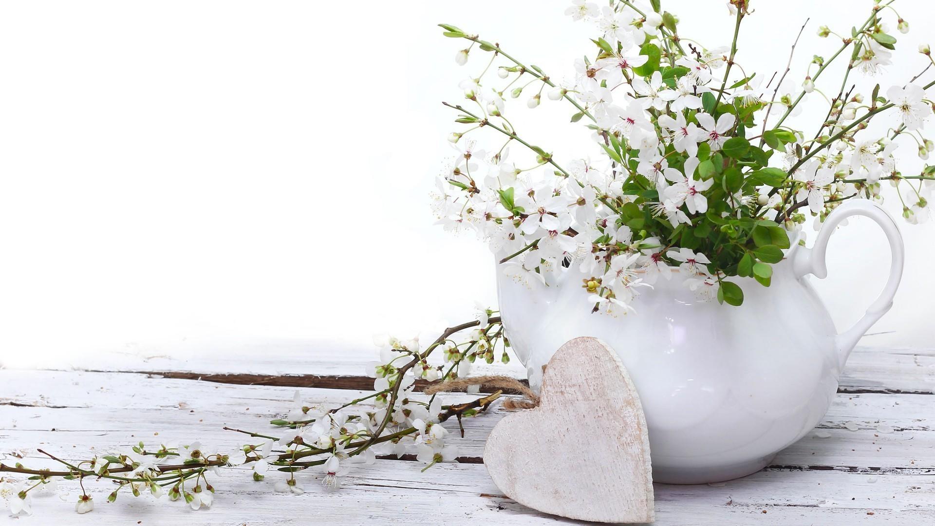 Цветы в горшке на рабочий стол